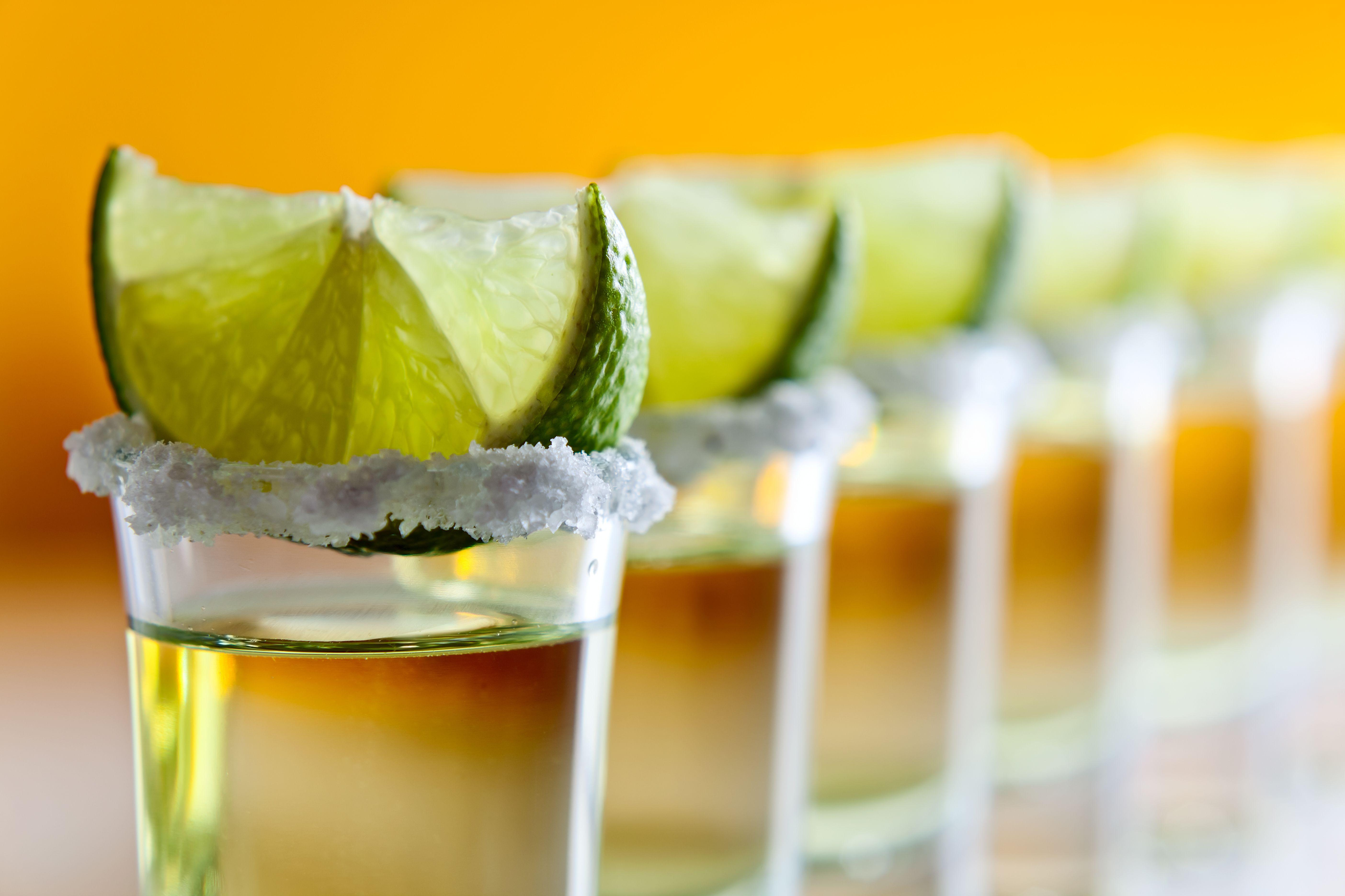tequila wallpapers wallpaper cave