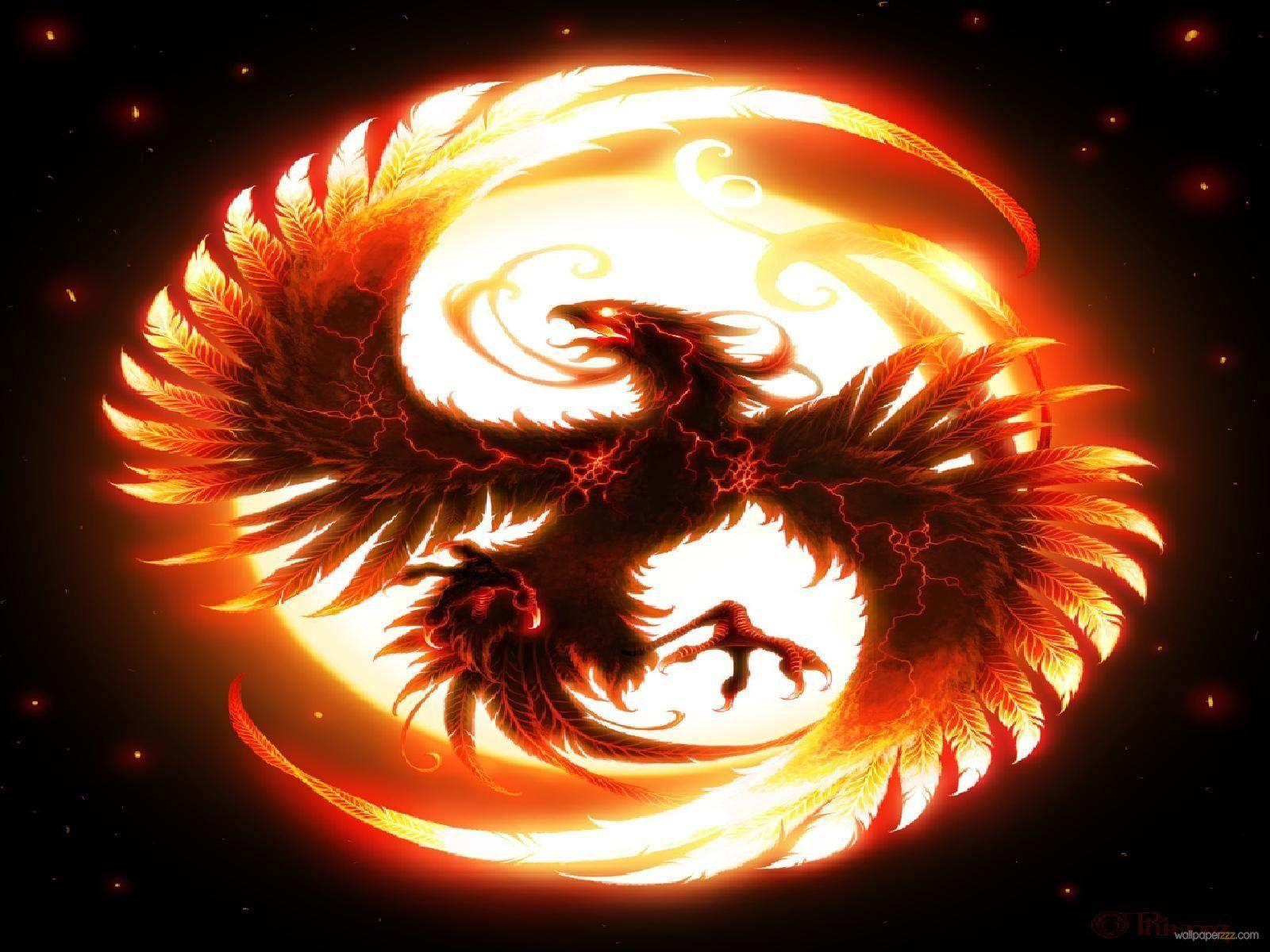 Dragon Fire Wallpapers