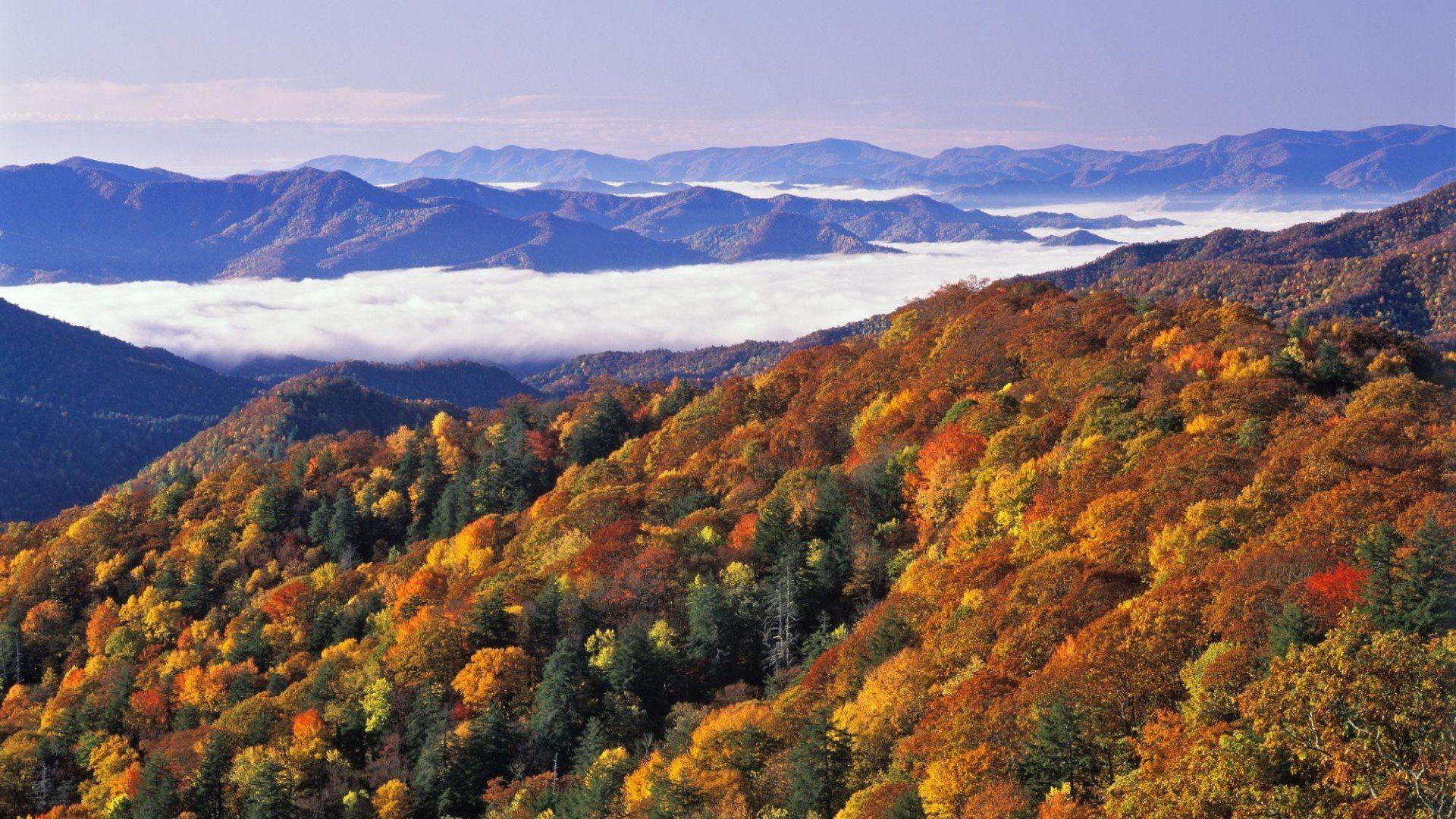 Great Smoky Mountains National Park 242425 - WallDevil