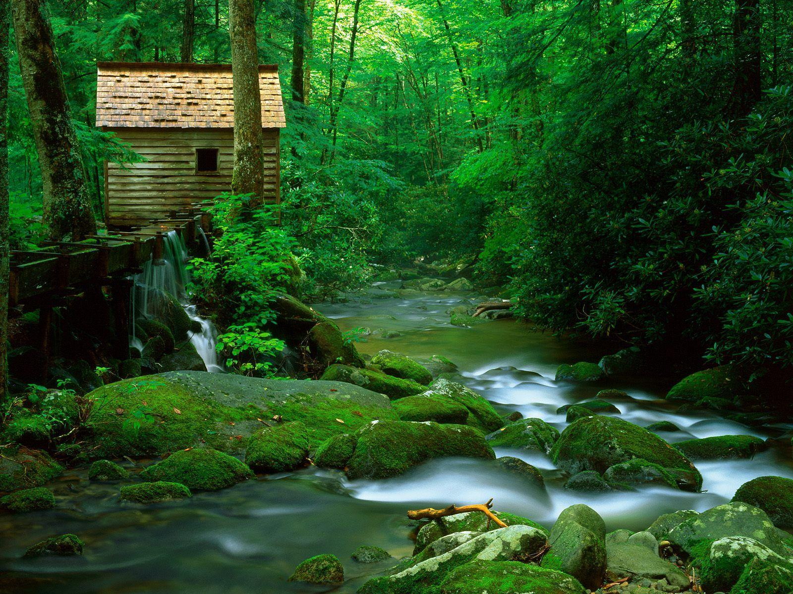 Appalachian Mountains | For more information visit : http://www ...