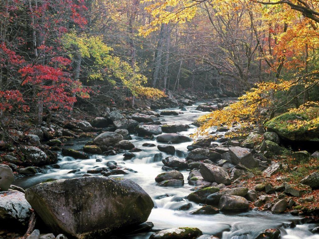 Nature: Little River, Tremont, Great Smoky Mountains National Park ...