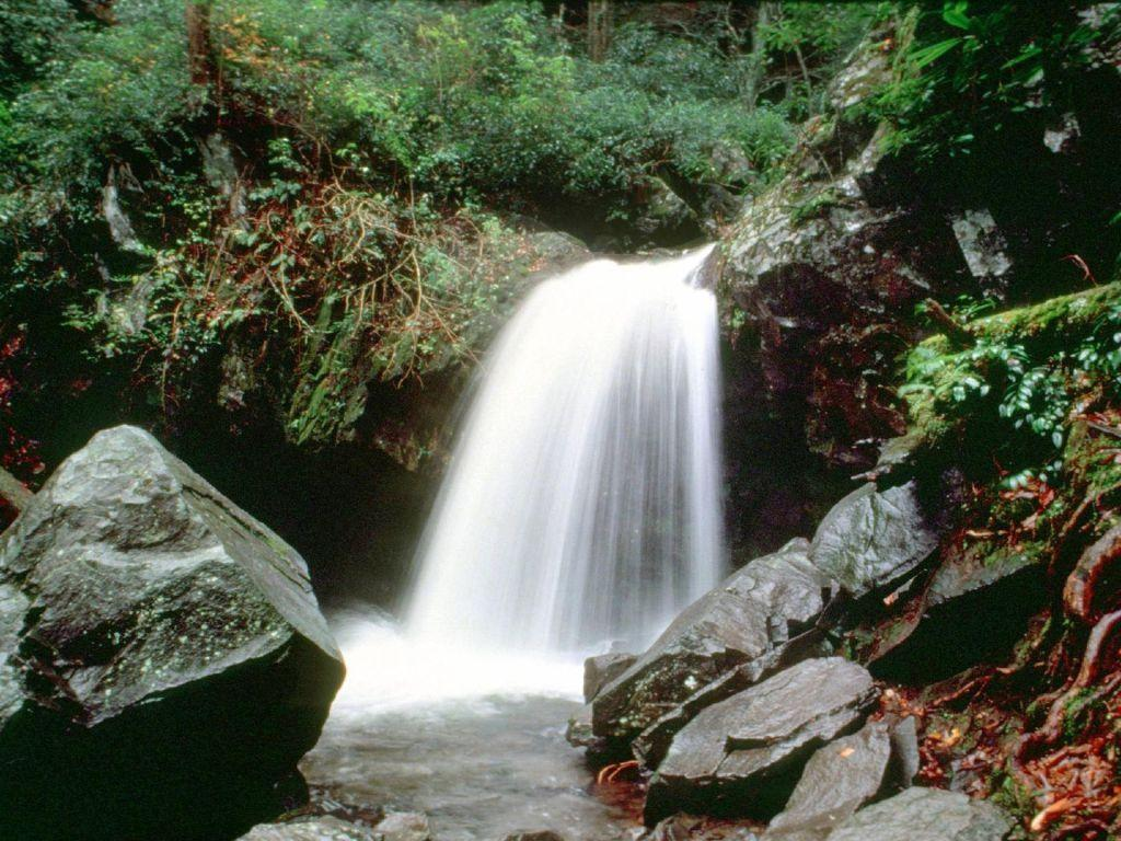Great Smoky Mountains National Park: 10 tips for your visit ...
