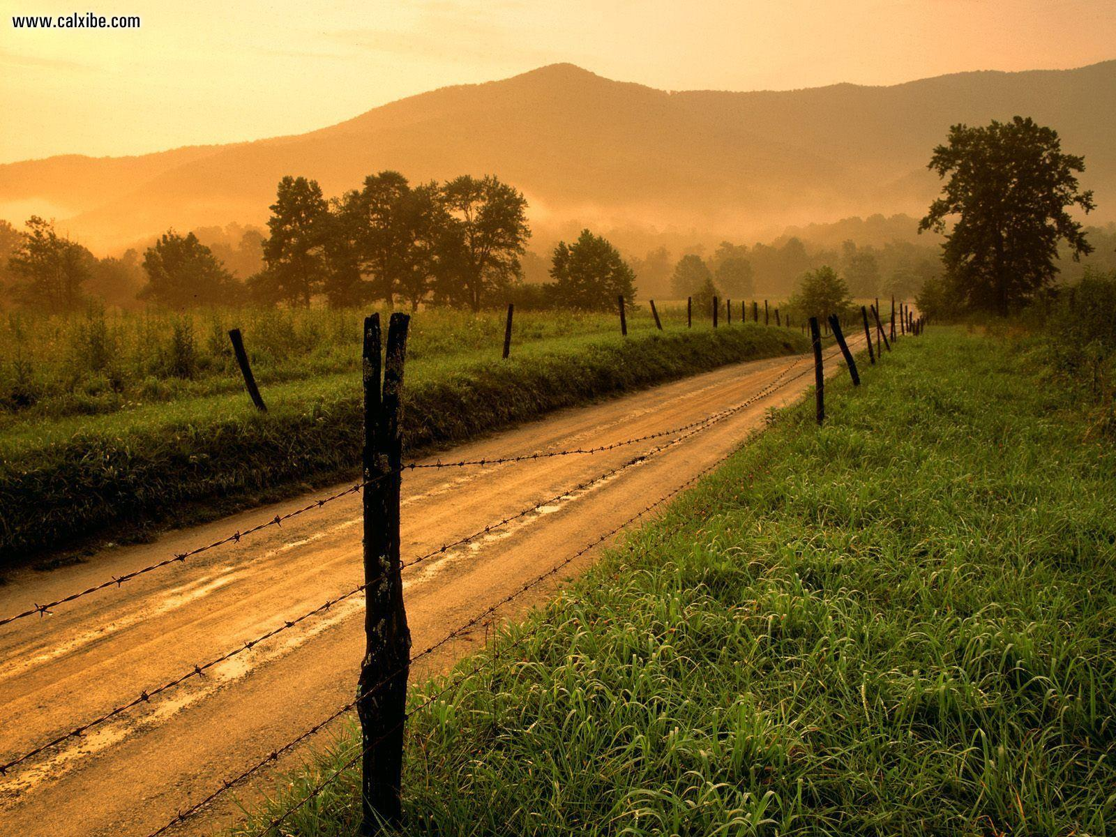 Nature: Sparks Lane At Sunset Cades Cove Great Smoky Mountains ...