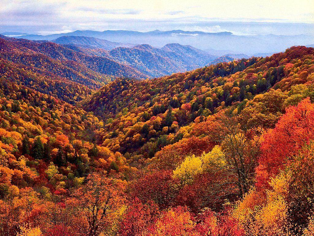 Great Smoky Mountains National Park - National Park in United ...