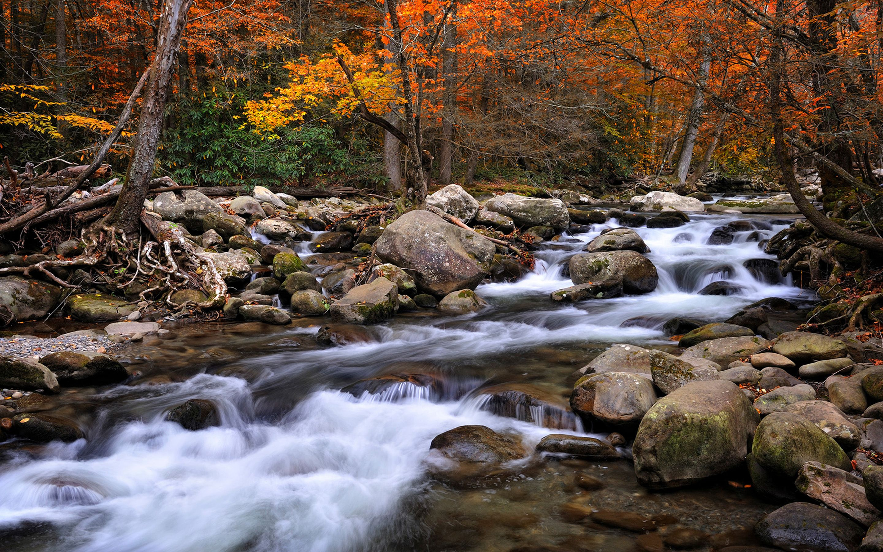 Beautiful-National-Parks-in-America-Great-Smoky-Mountains-National ...