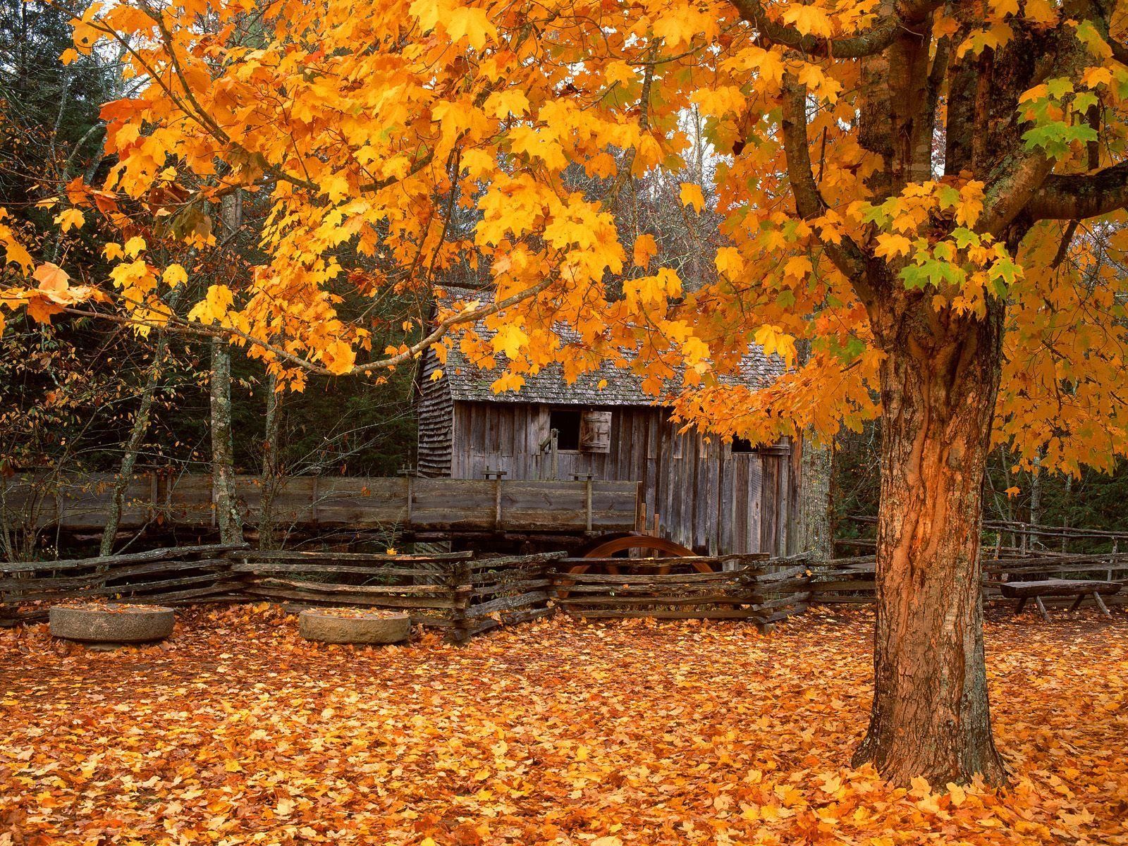 John Cable Mill Cades Cove Great Smoky Mountains National Park ...