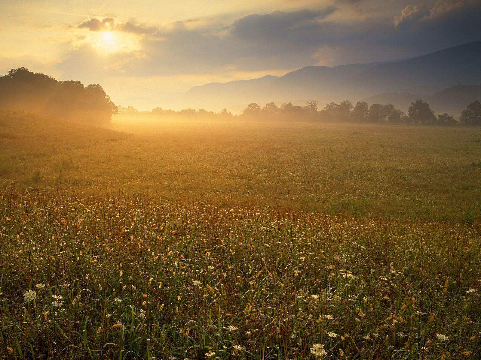 Nature: Cades Cove Sunrise, Great Smoky Mountains National Park ...