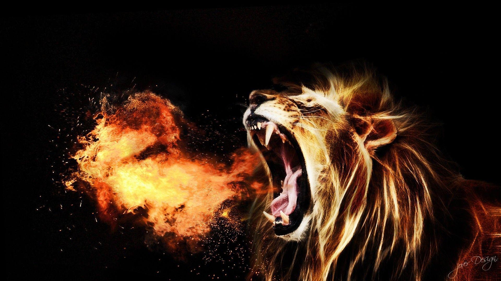Lion Roar Free Download HD Wallpapers 3308