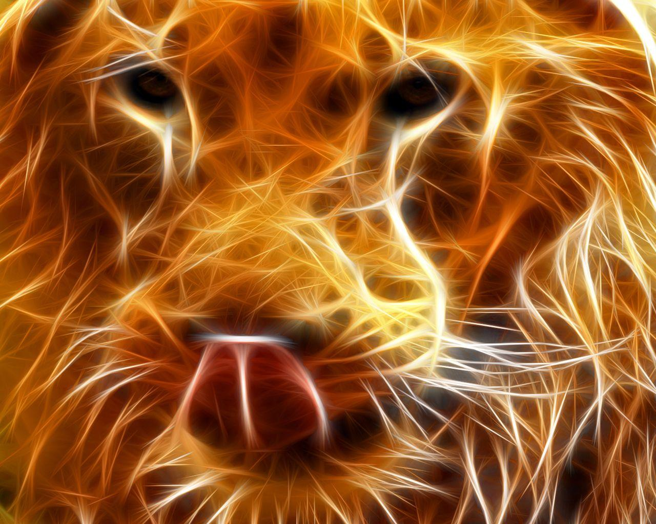 Backgrounds For Cool Fire Lion Backgrounds | Www.8backgrounds.com