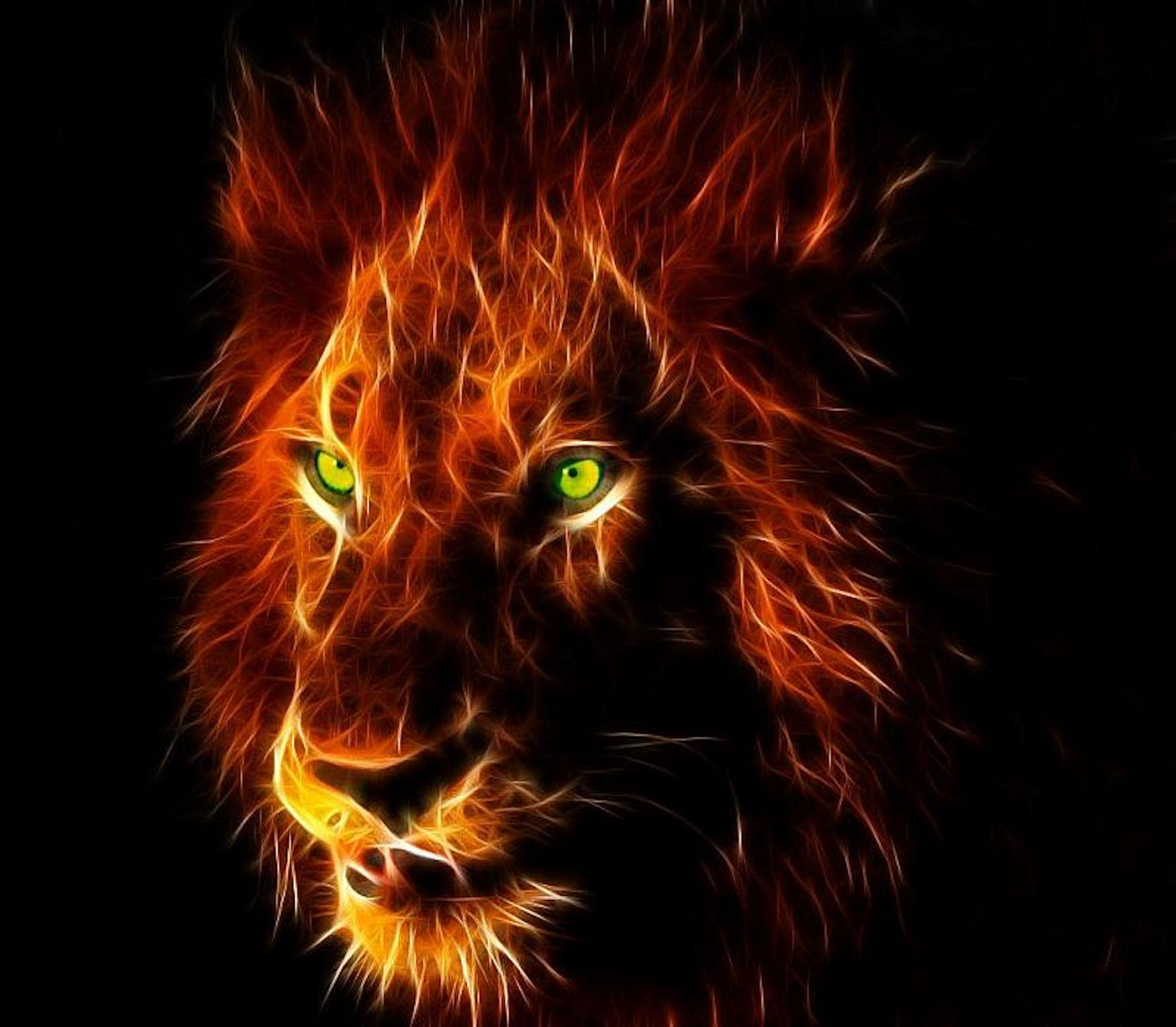 Fire Lion Wallpapers Wallpaper Cave