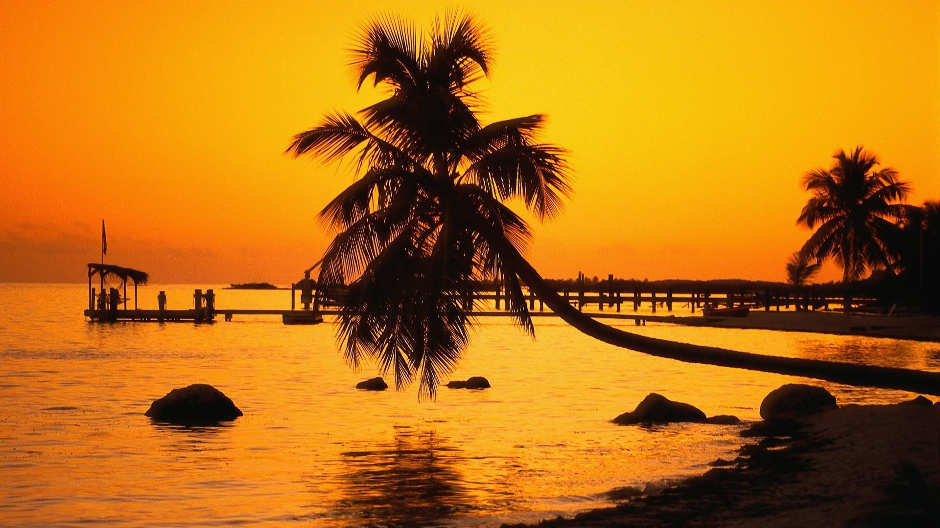 Florida keys nature silhouettes sunset wallpapers