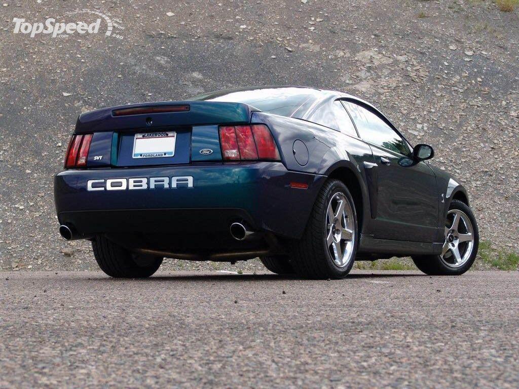 Terminator Mustang Wallpaper