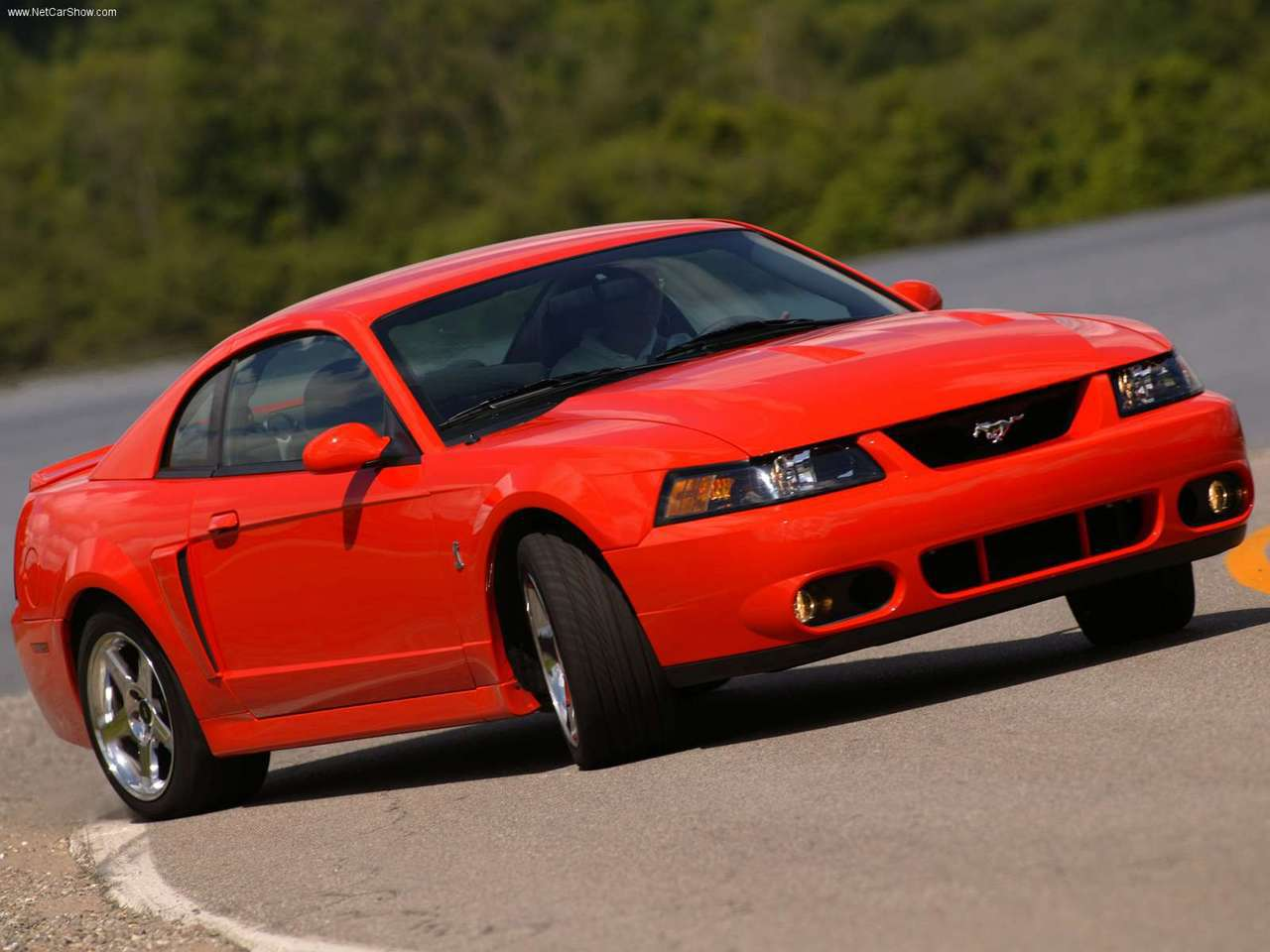 What Is A Mustang Cobra Terminator