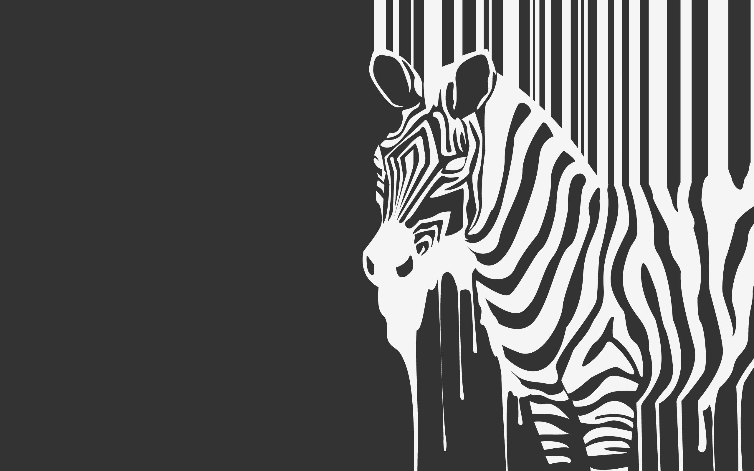 Zebra Wallpapers Downloads 17911
