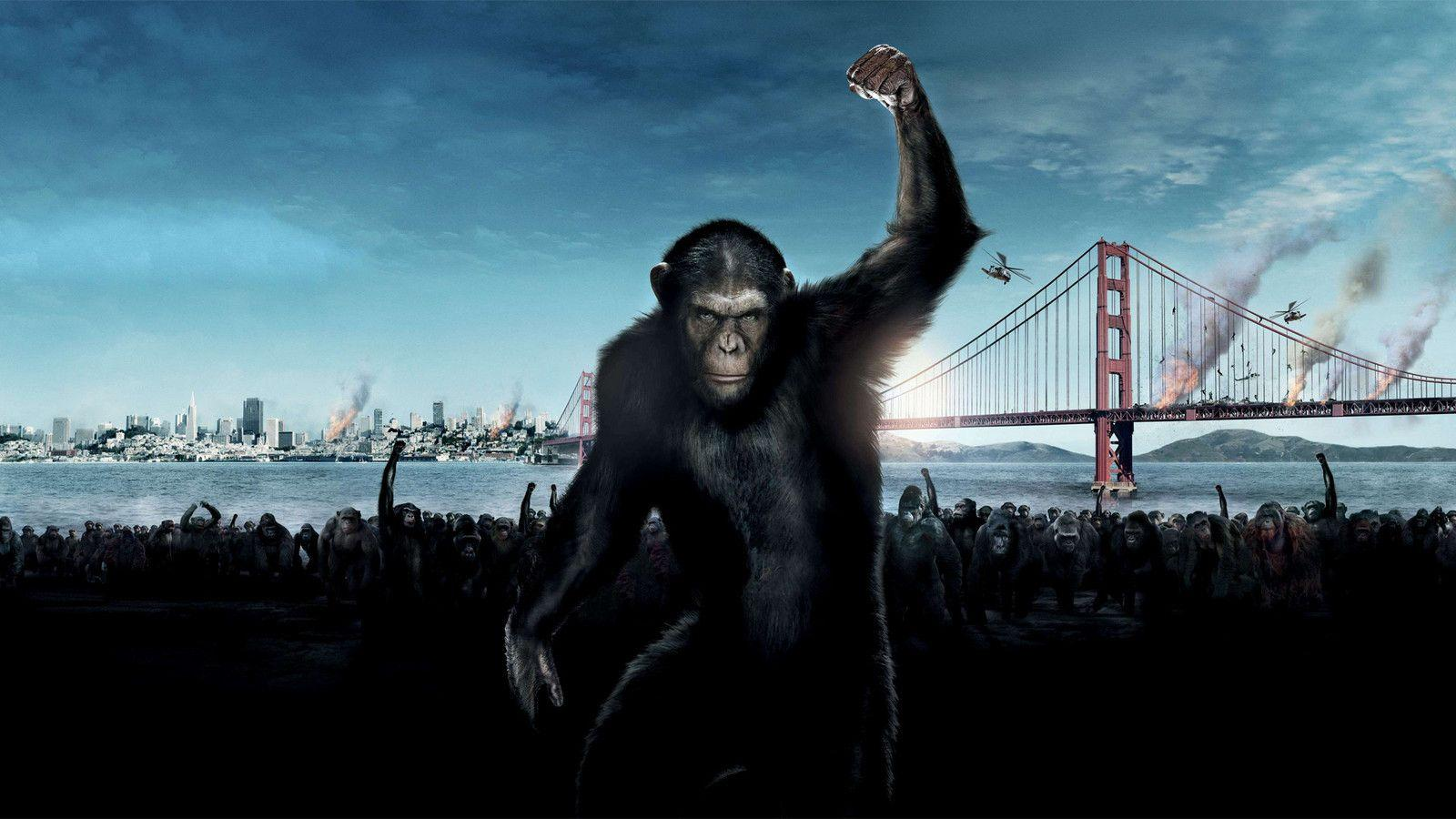 Caesar Planet Of The Apes Wallpapers Wallpaper Cave