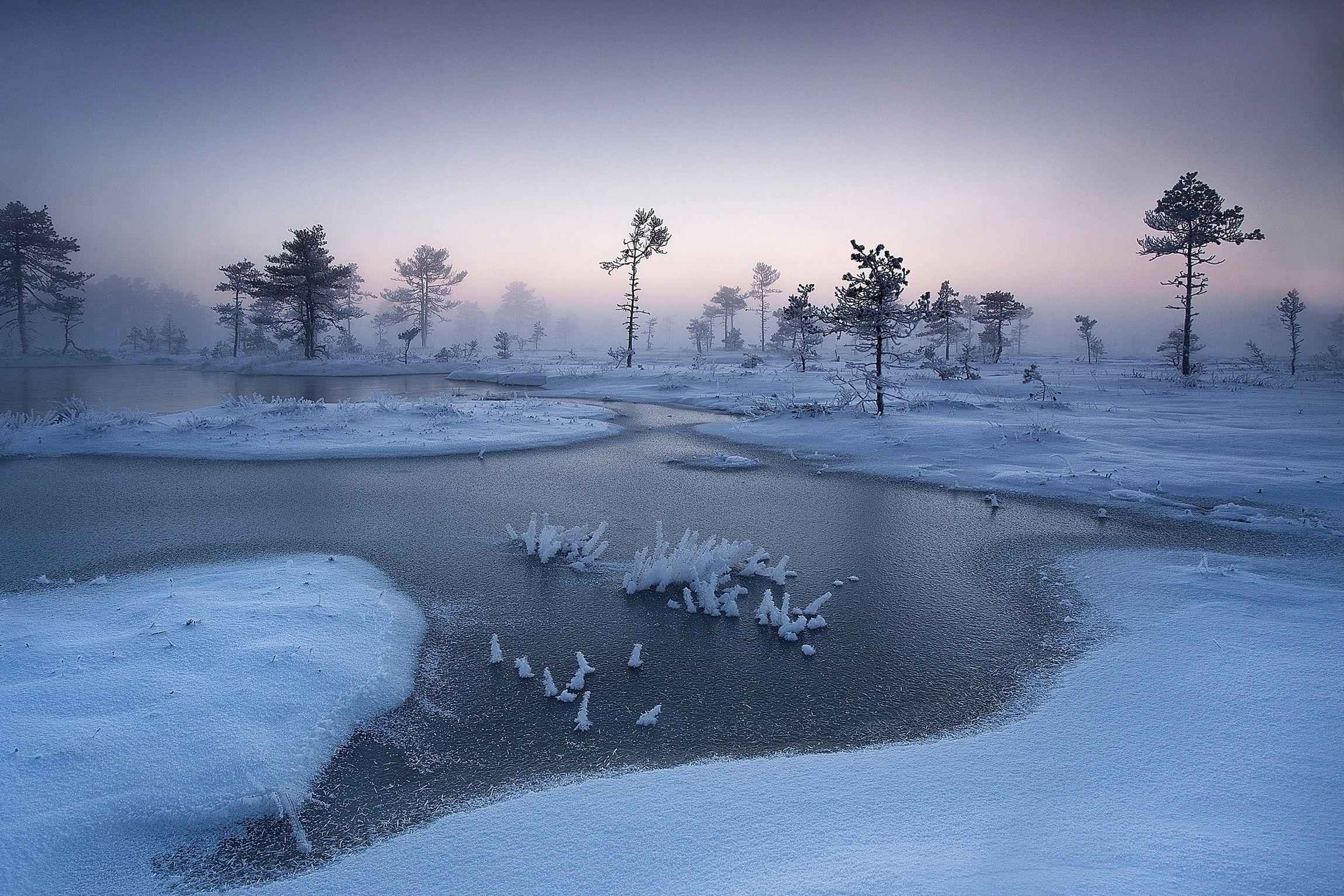 nature, Landscape, Sunrise, Winter, Mist, River, Trees, Snow
