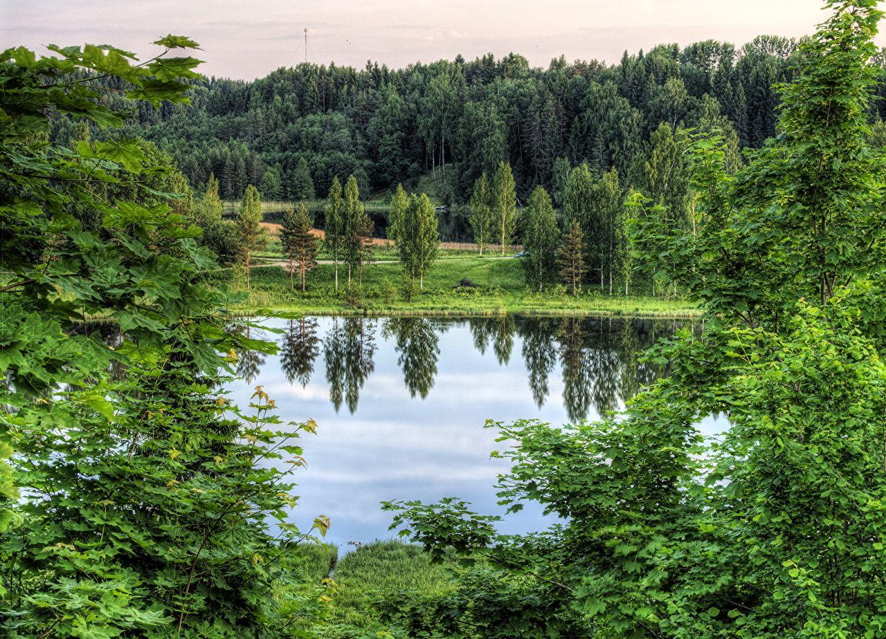 Wallpapers Estonia Rouger HDRI Nature Lake Forests