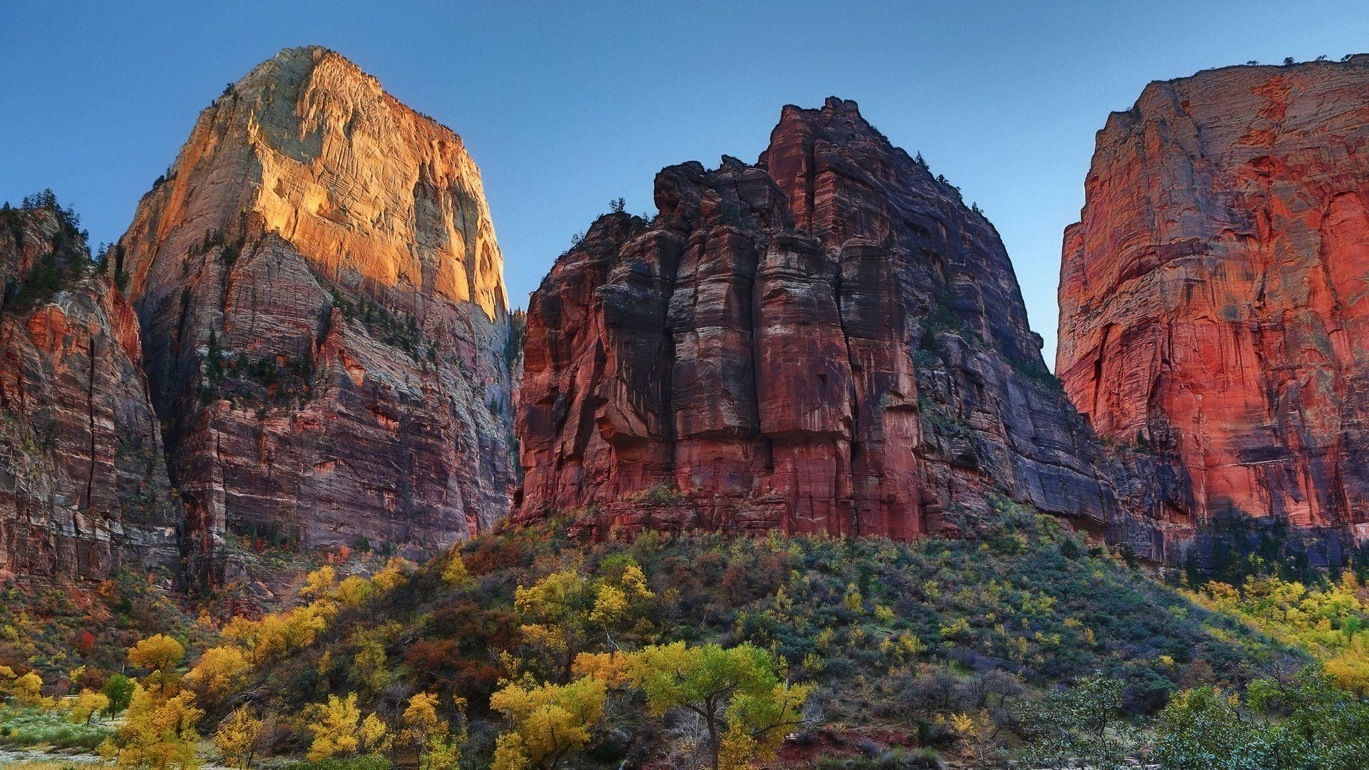 Zion National Park #6845046