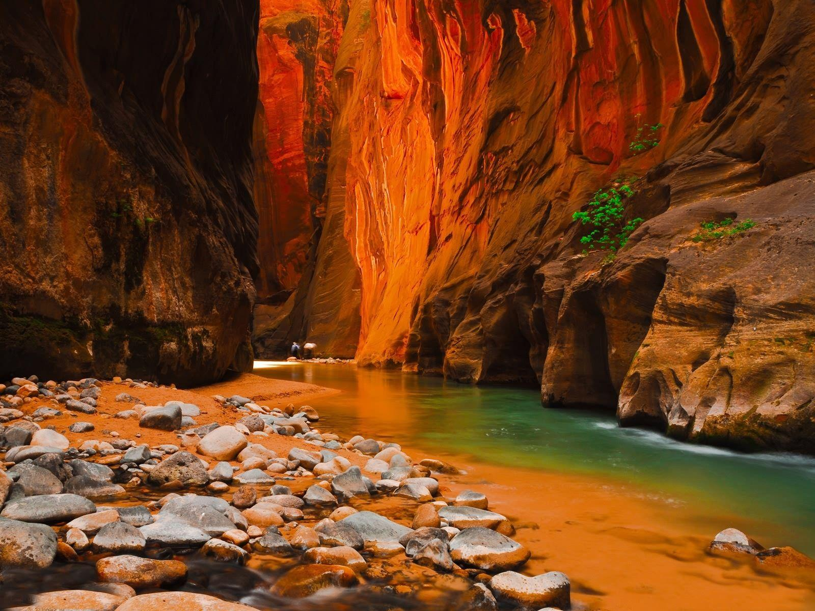 Zion National Park Emerald Pools - wallpaper.