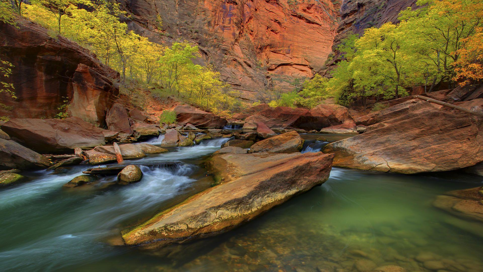 Zion National Park Narrows - wallpaper.