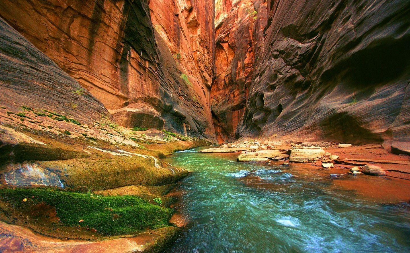 Hiking the Narrows in Zion. | Hiking Zion | Pinterest | National ...