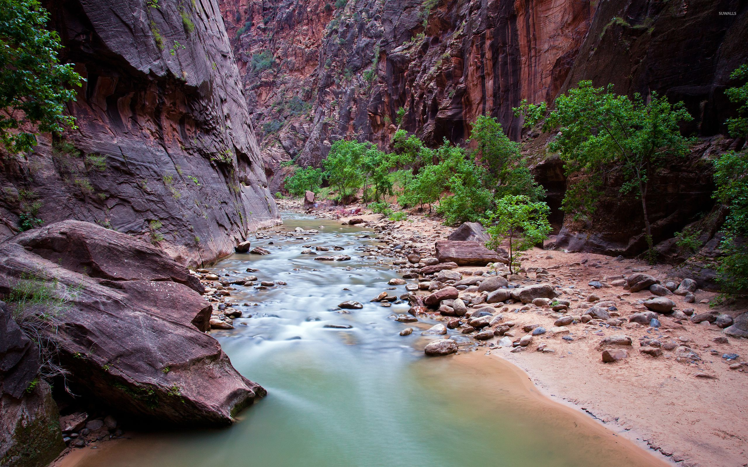 Small river stream in Zion National Park wallpaper - Nature ...