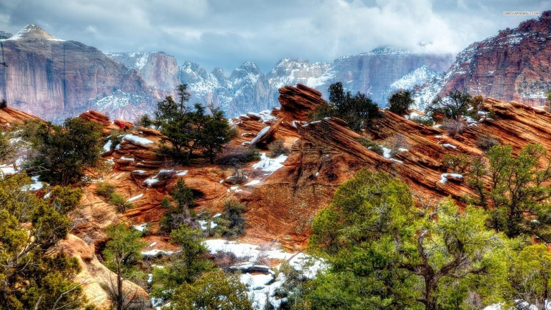Zion National Park In The Winter - WallDevil