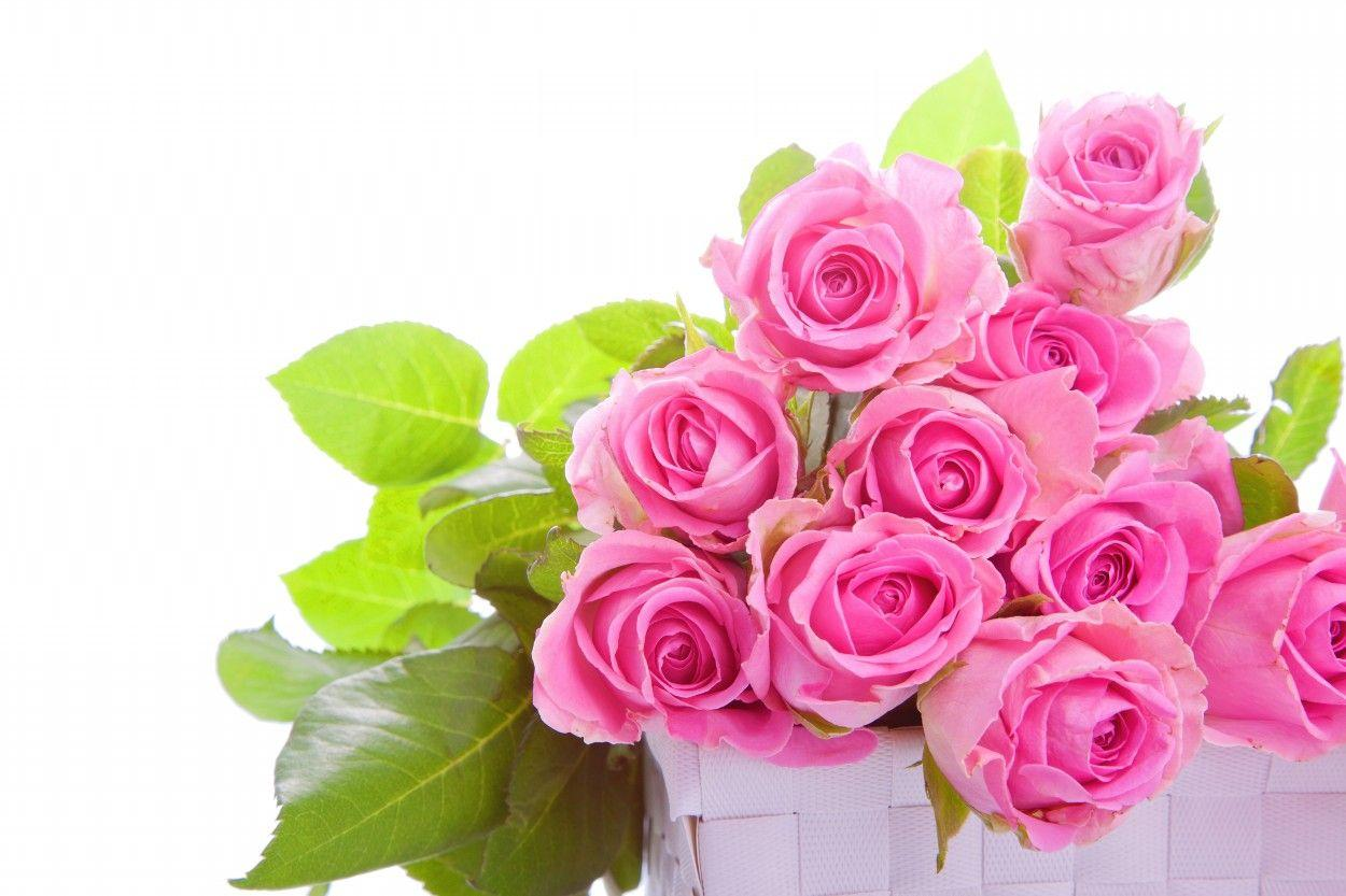 Bouquets Wallpapers Wallpaper Cave