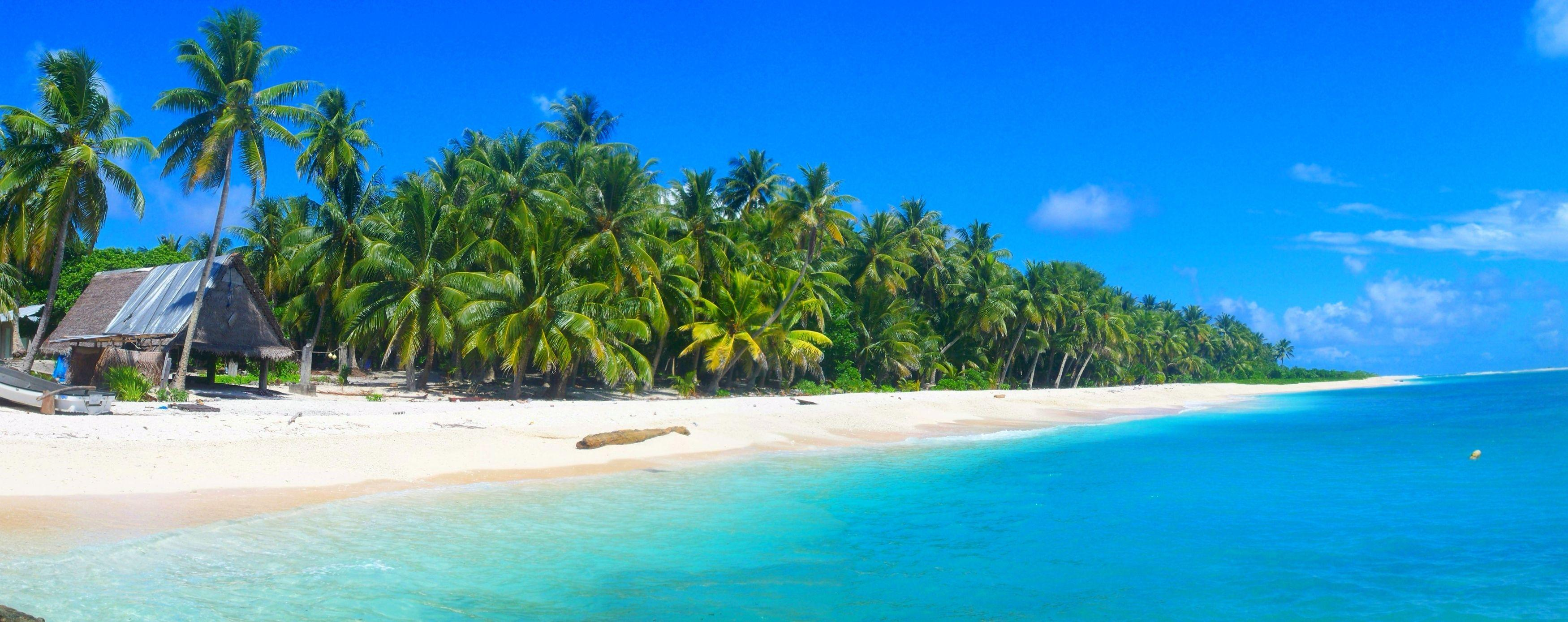 palm trees, summer, beautiful, beach, hut, white sand, boat ...