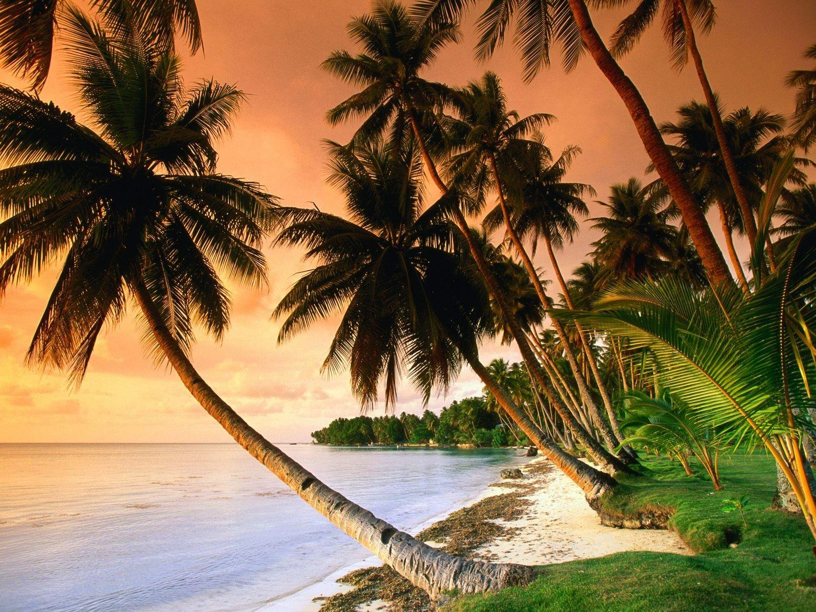 Beach: BLUE LAGOON RESORT BEACH Nature Beaches Micronesia ...