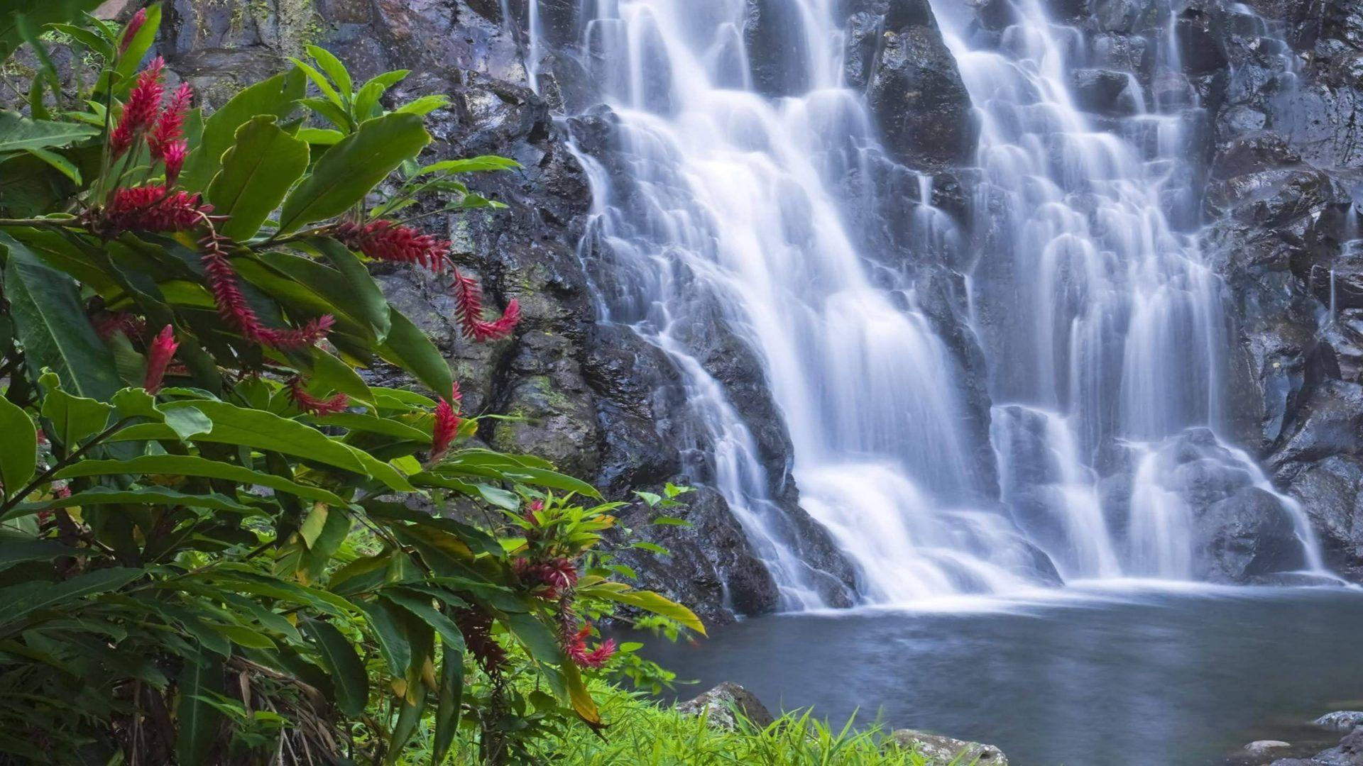 Kepirohi Waterfall Is Located Close To Nan Madol Pohnpei Federated ...