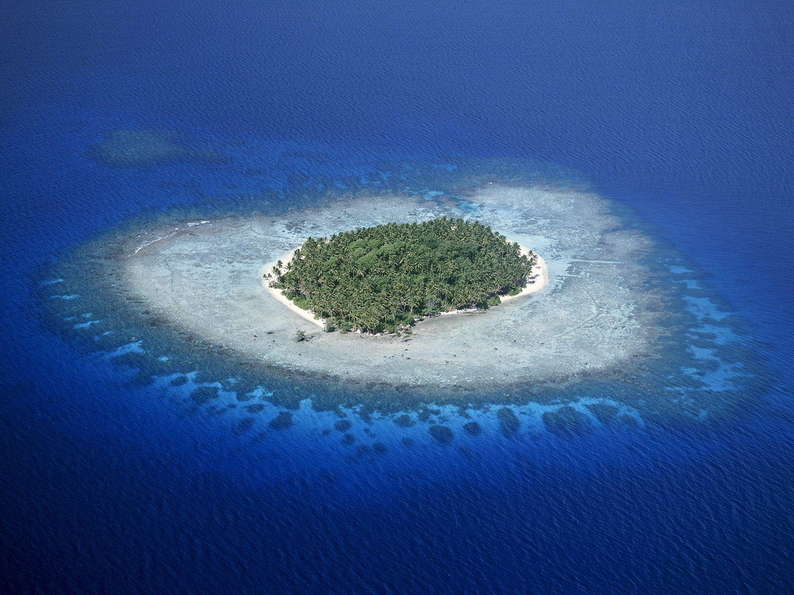 Coral Reefs Micronesia | WALLPAPERS | Pinterest | Coral reefs ...