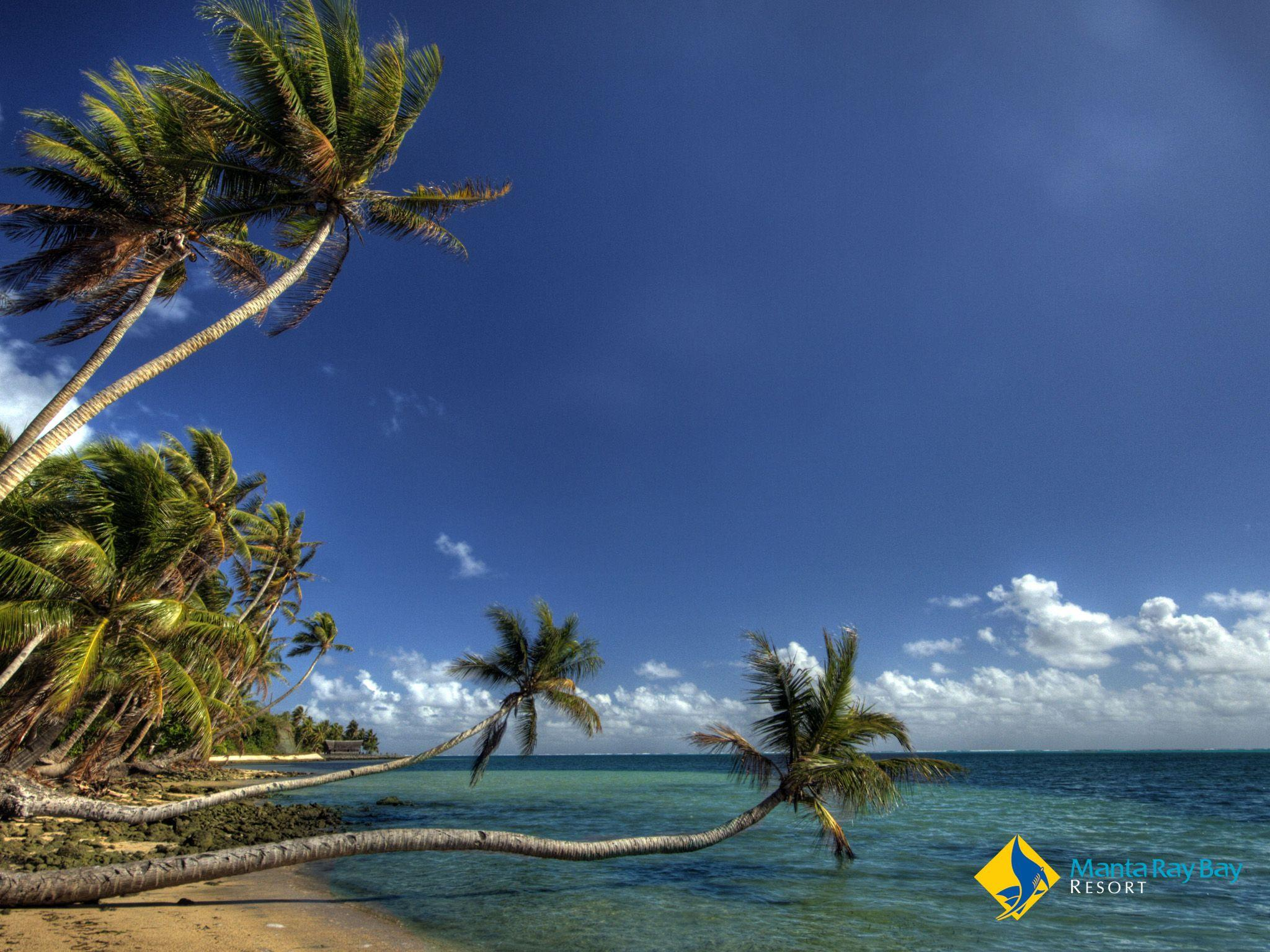 Manta Ray Bay Wallpaper Gallery | Manta Ray Bay Resort & Yap ...