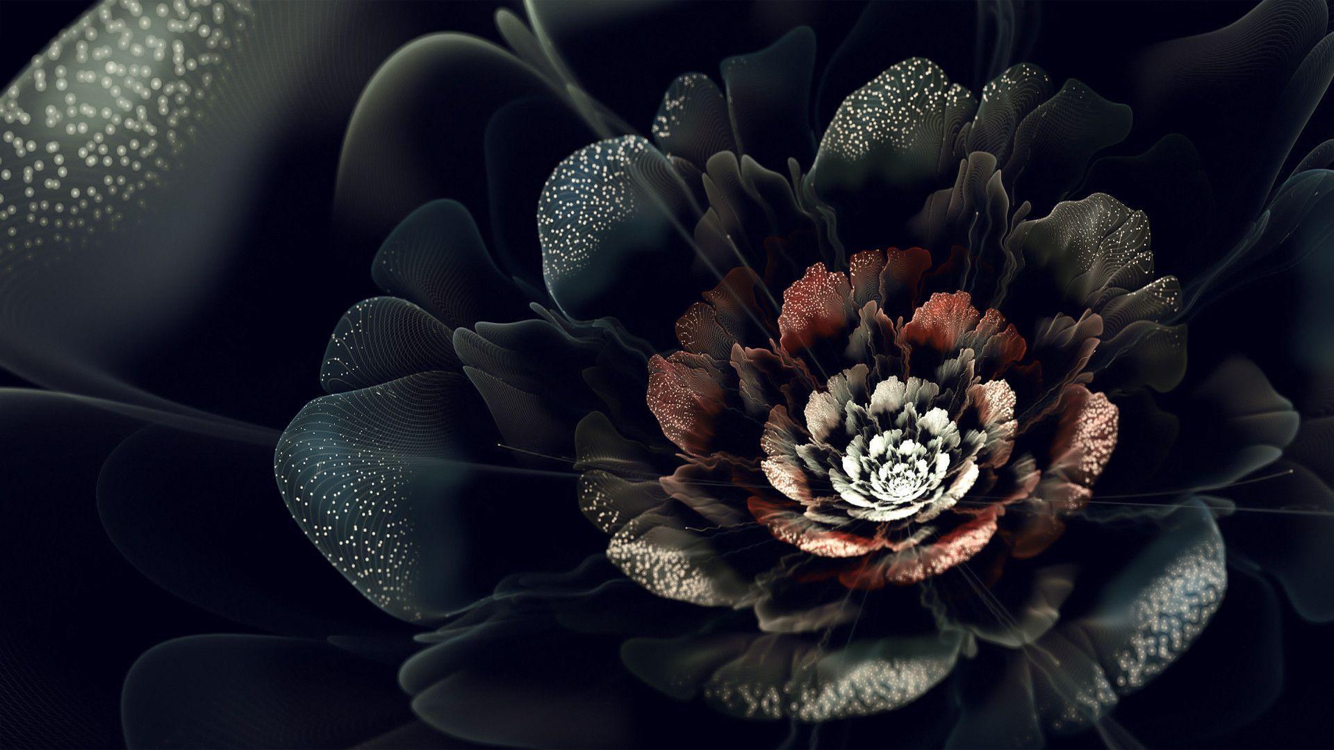 Black Flowers Wallpapers Wallpaper Cave