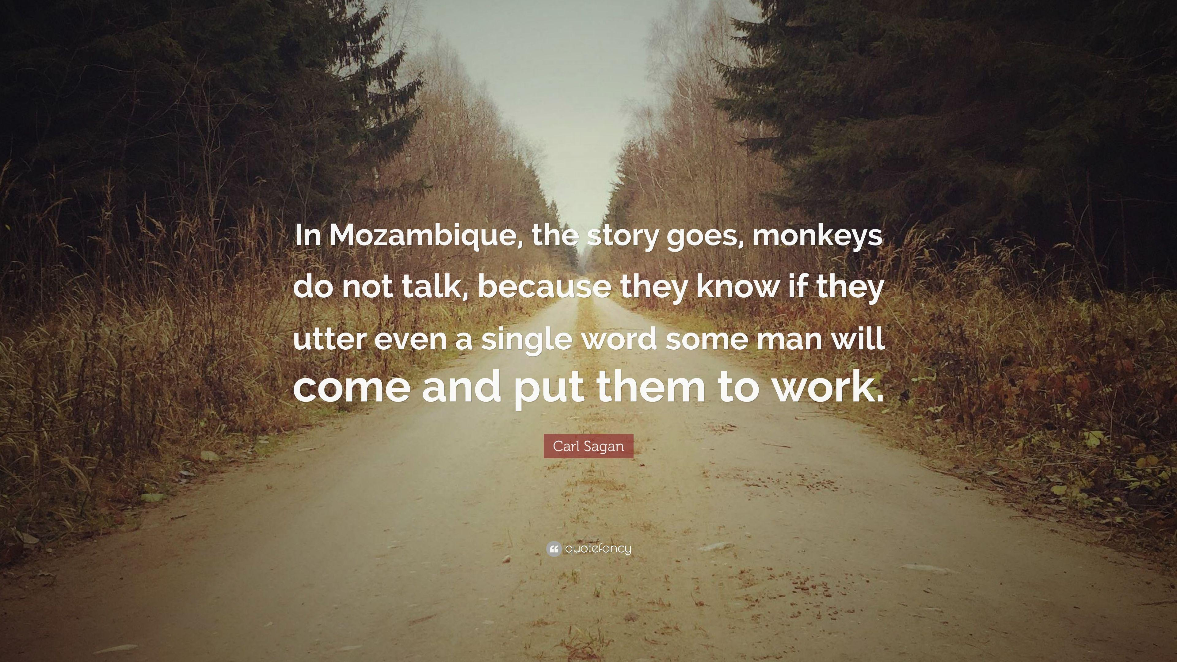 "Carl Sagan Quote: ""In Mozambique, the story goes, monkeys do not"