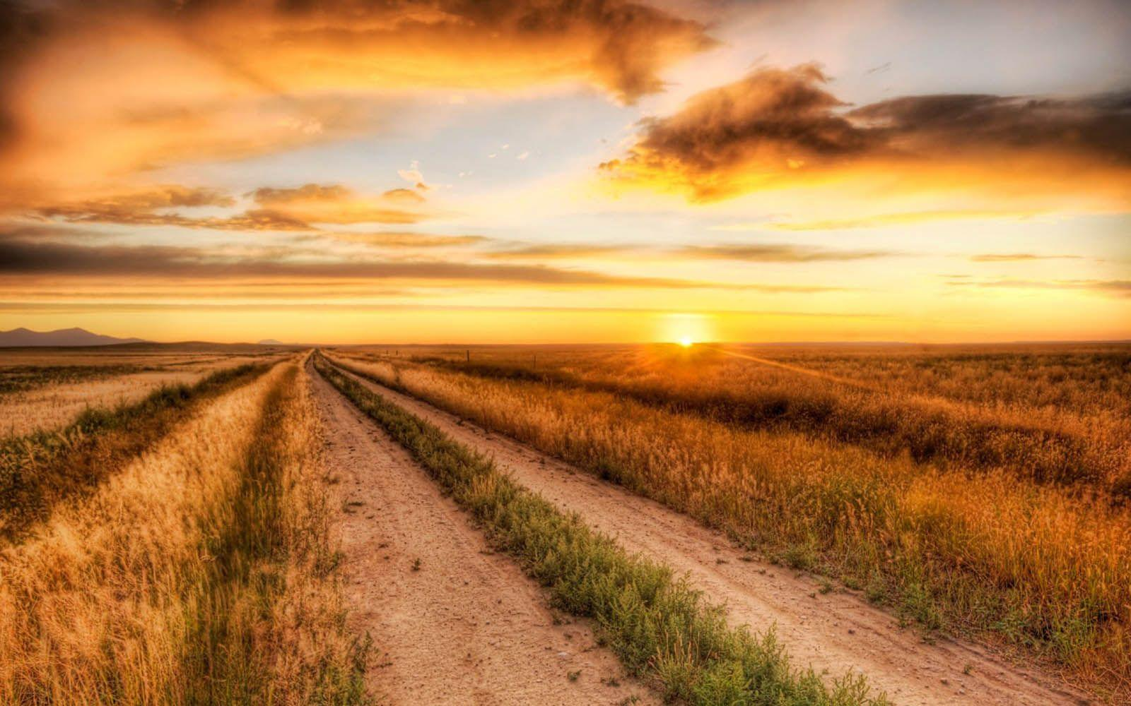 Celebrity Wallpapers: Prairie Road Nature Wallpapers