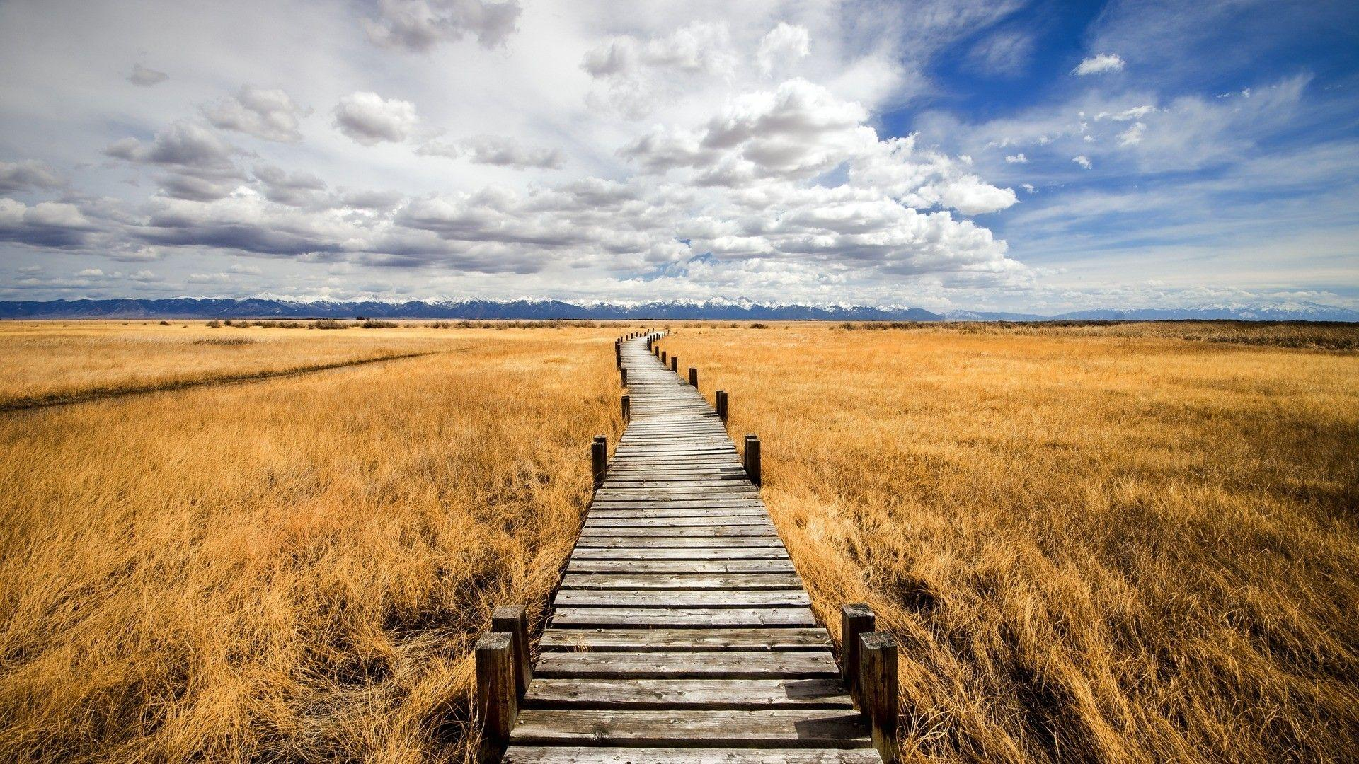 Boardwalk on grassy wetlands the prairie wallpaper | AllWallpaper ...