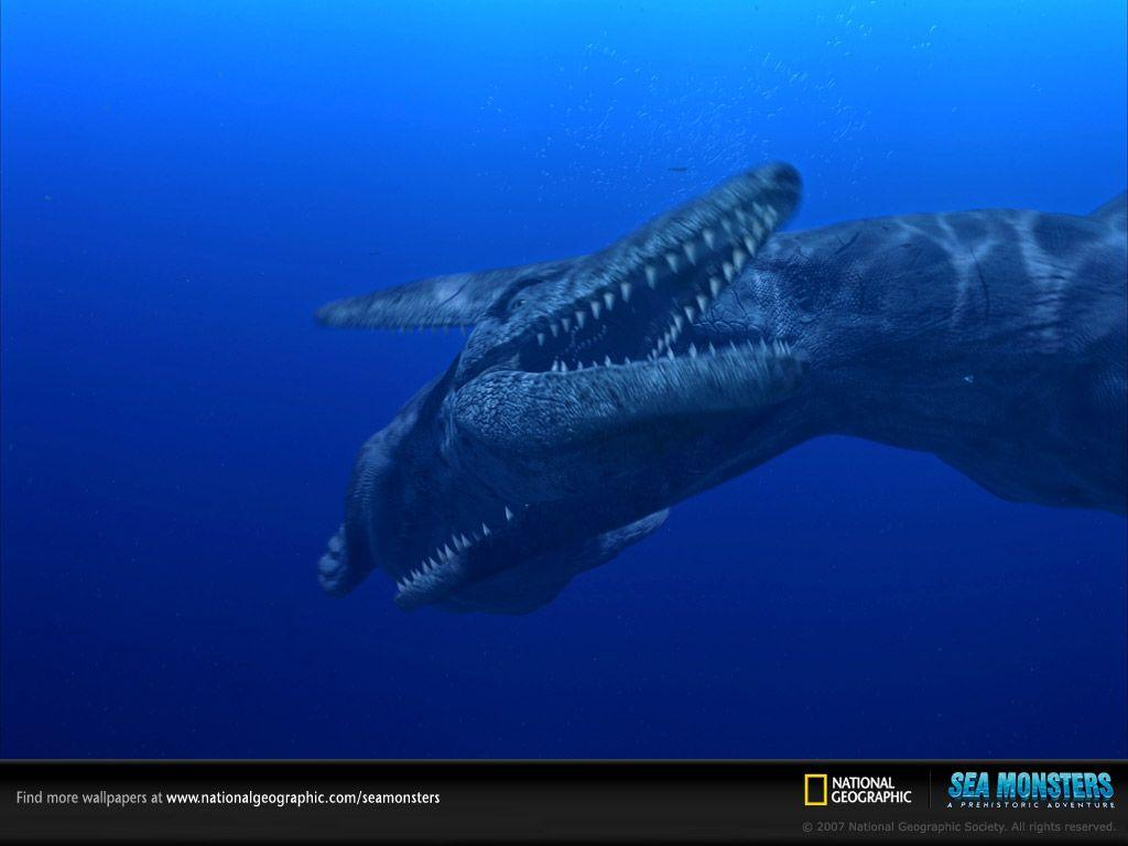 Tylosaurus Fight - Wallpapers - Sea Monsters: A Prehistoric ...