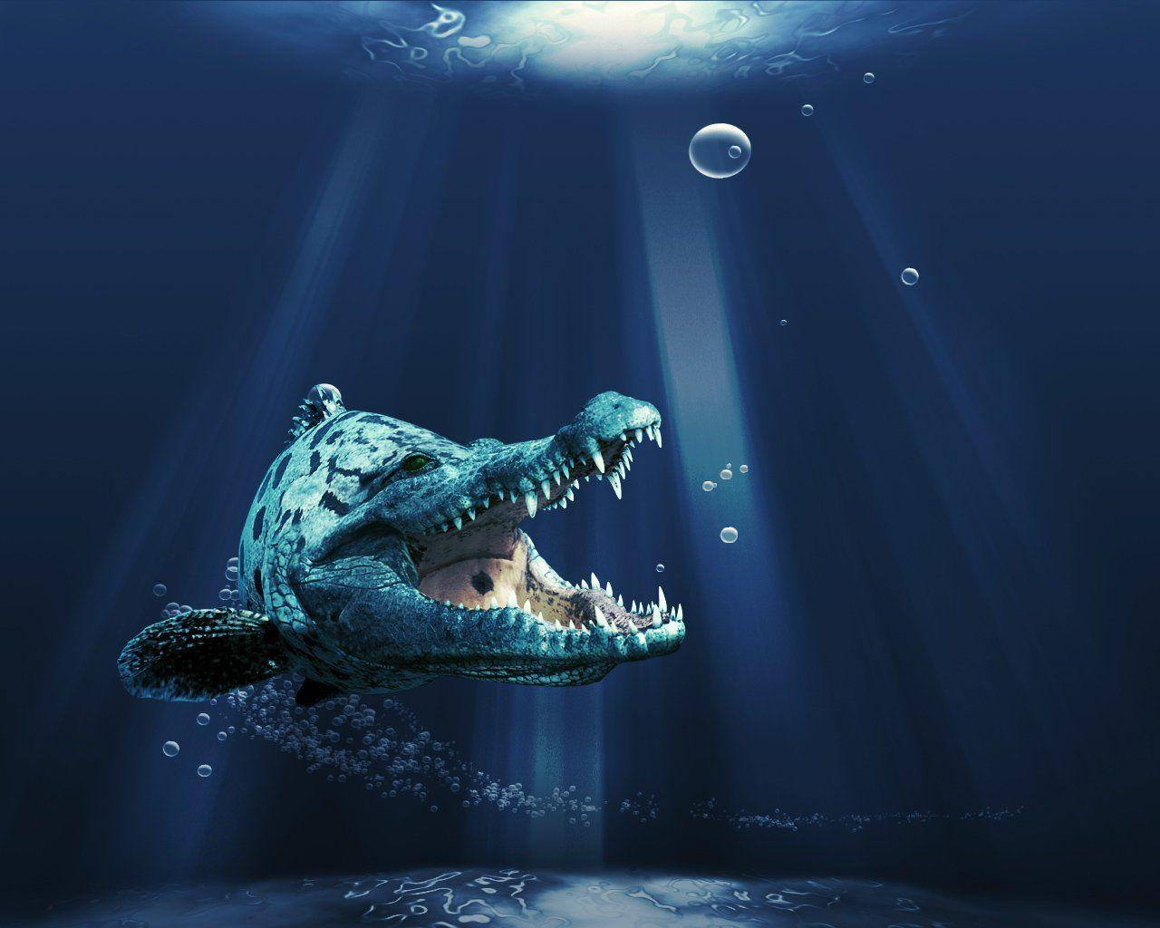Sea Monster Full HD Wallpaper and Background | 1920x1080 | ID:526758