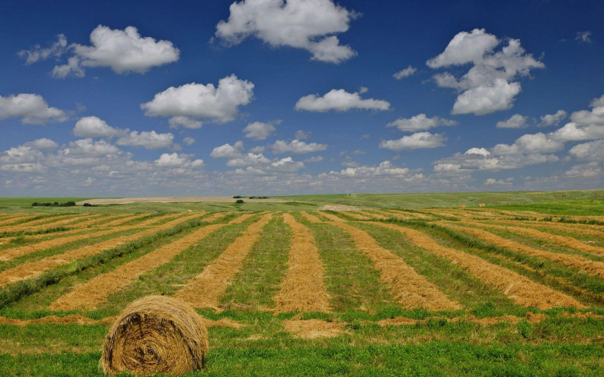 Prairie Wheat Farm Sky Canada wallpapers | Prairie Wheat Farm Sky ...