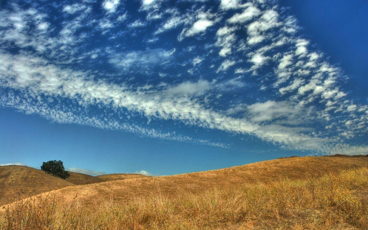 Blue sky, the yellow prairie Wallpaper - Landscape Wallpapers ...