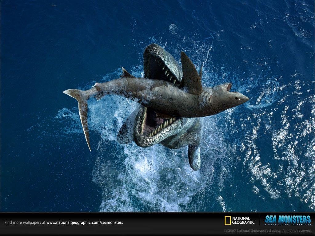 Tylosaurus and Squalicorax - Wallpapers - Sea Monsters: A ...