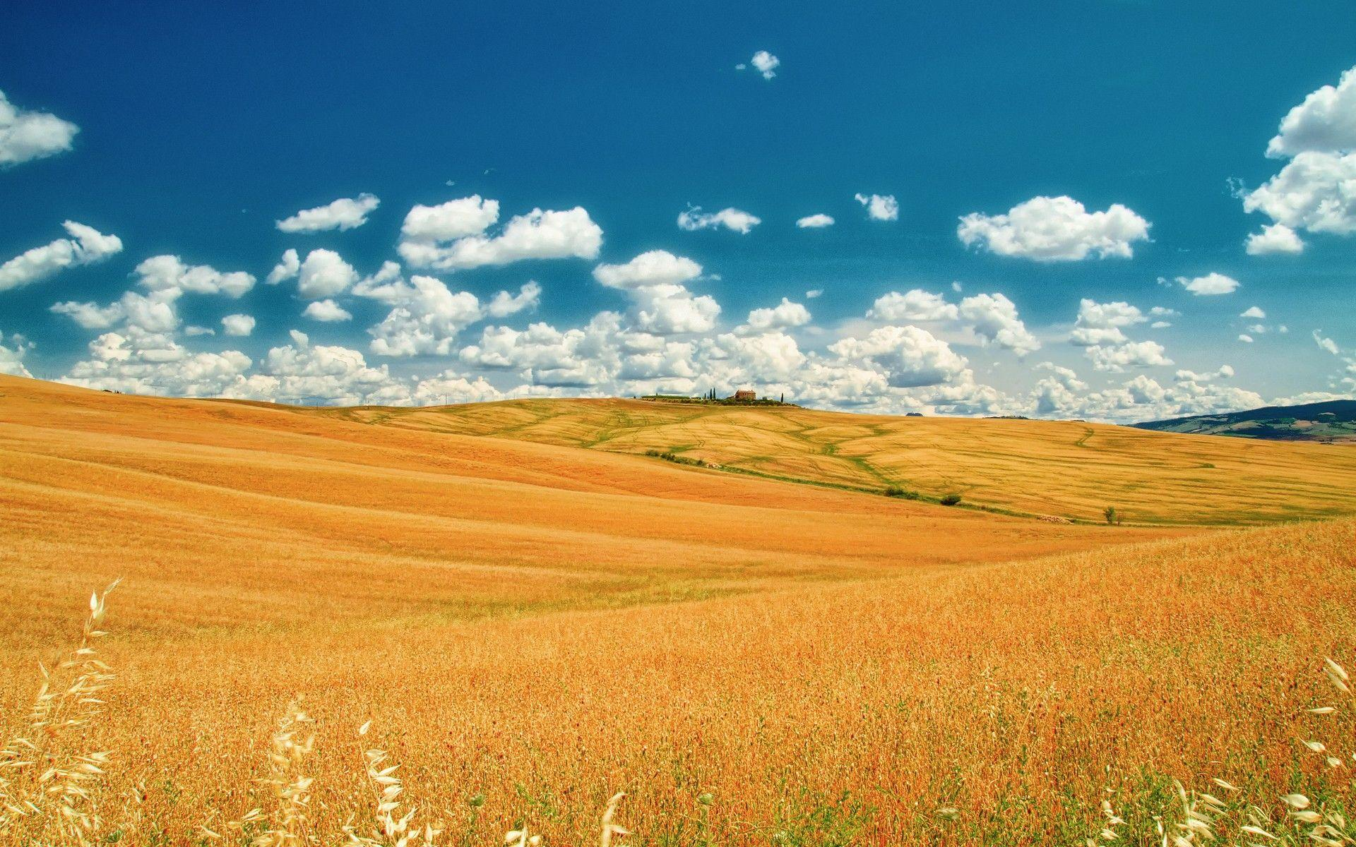 Tuscan Prairie Wallpapers HD Charming Wallpaper 240x400px wallpaper