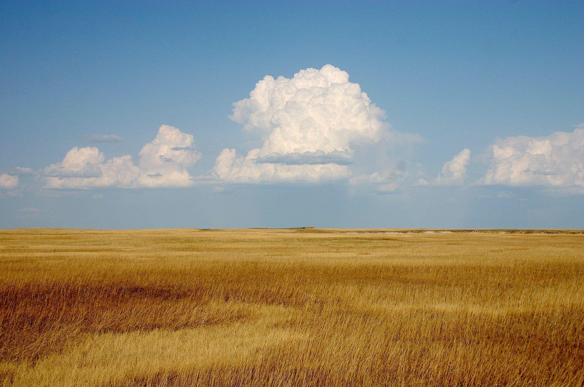 30+ Prairie Wind Wallpaper by Cher Kimbell, WallPortal.com