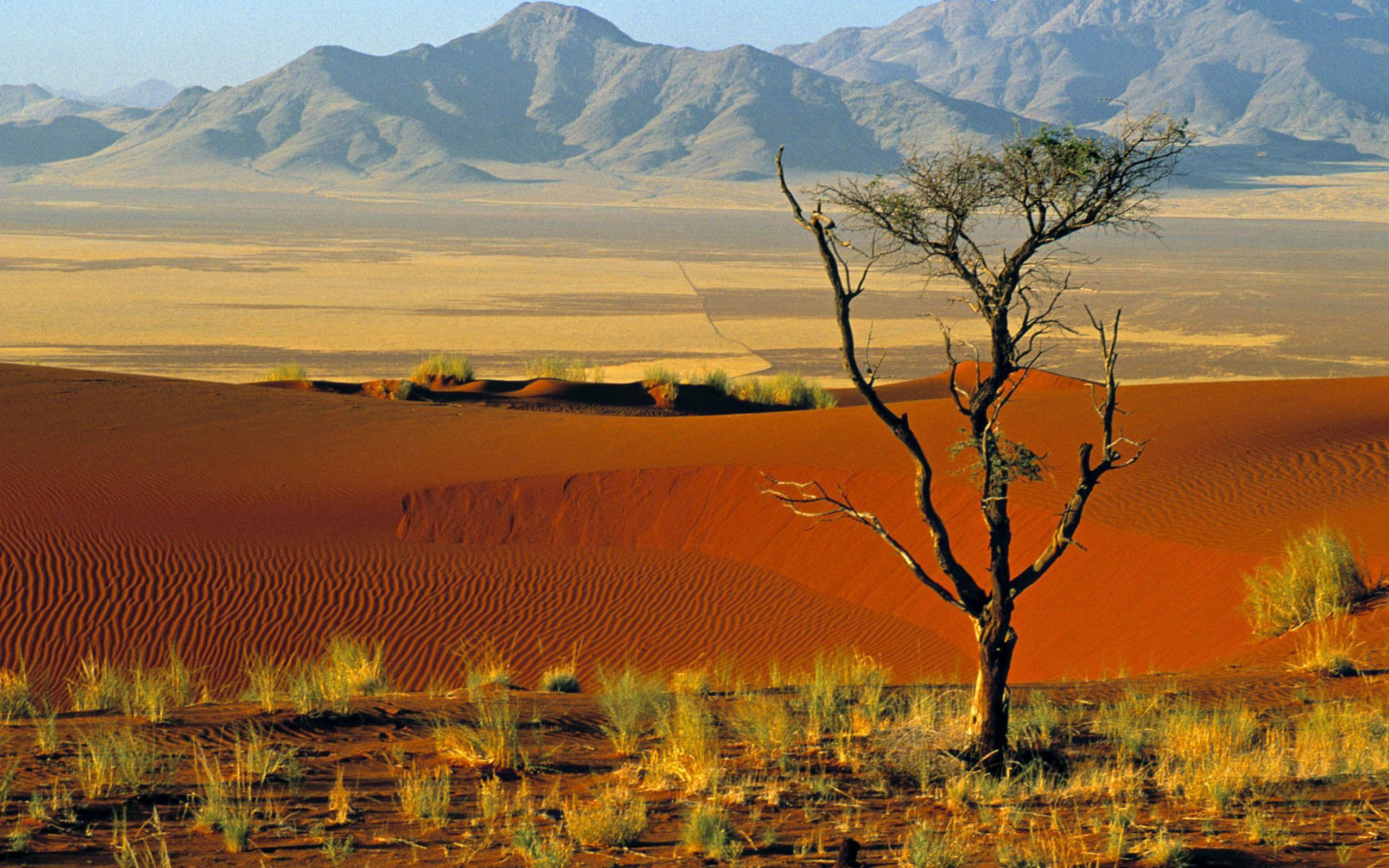 Cristina Nica: Namibia High Quality Wallpaper #758200