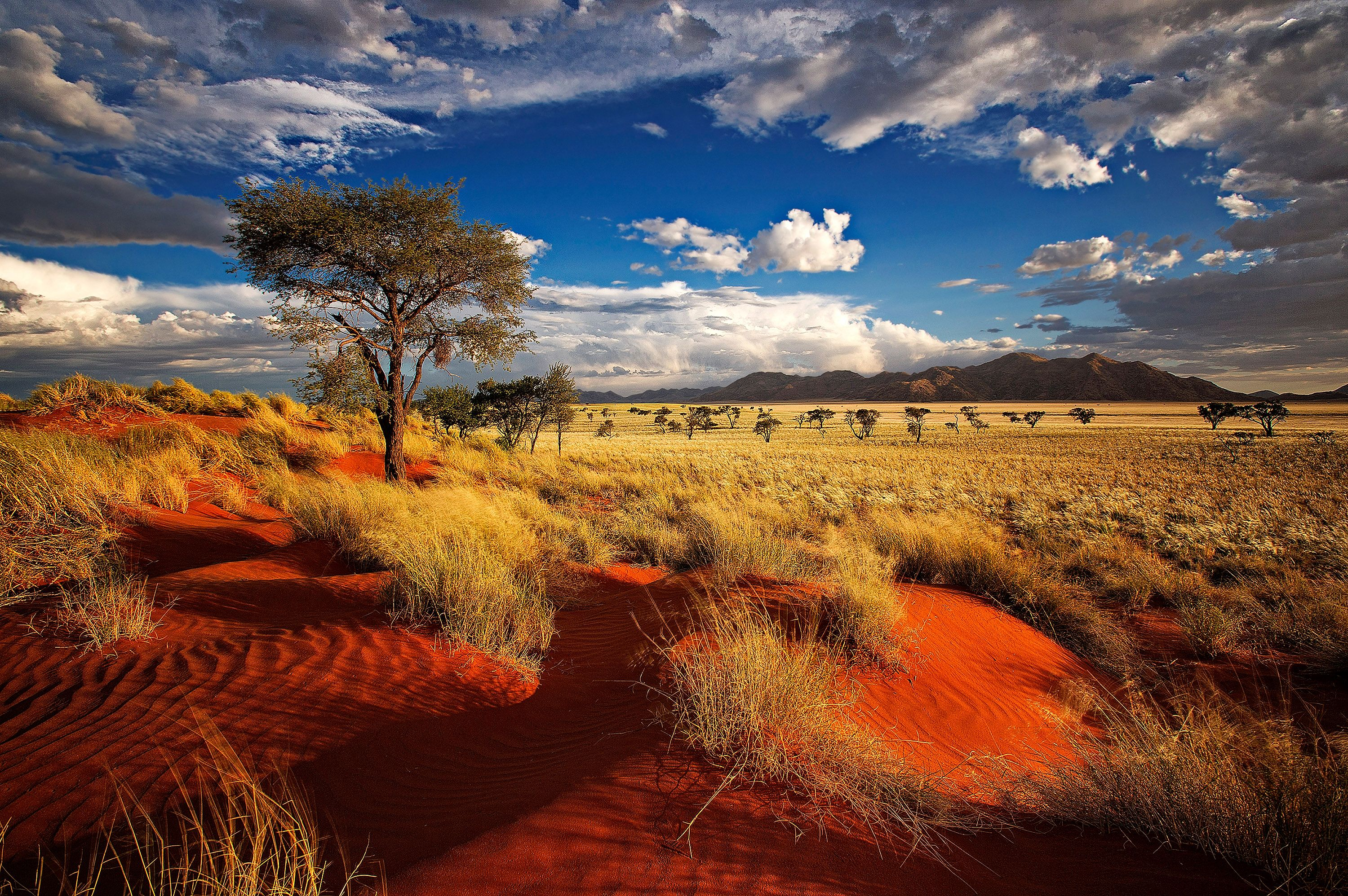 3000x1996px Widescreen wallpaper of Namibia 9 #1452499059