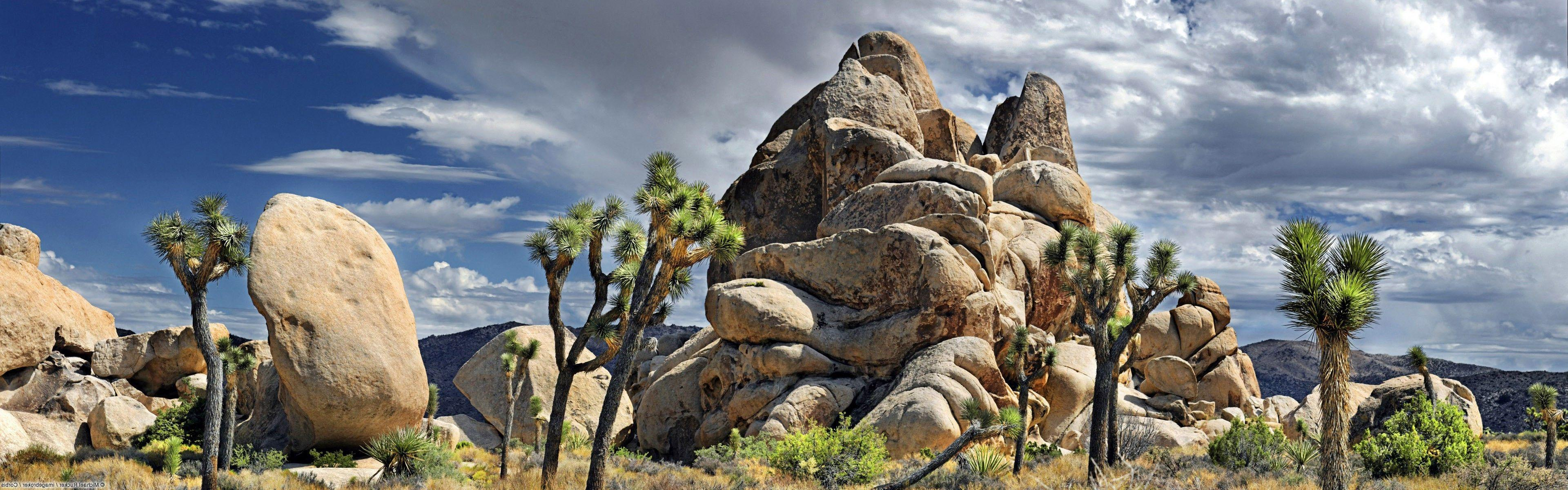 nature, Landscape, Rock, Joshua Tree National Park Wallpapers HD