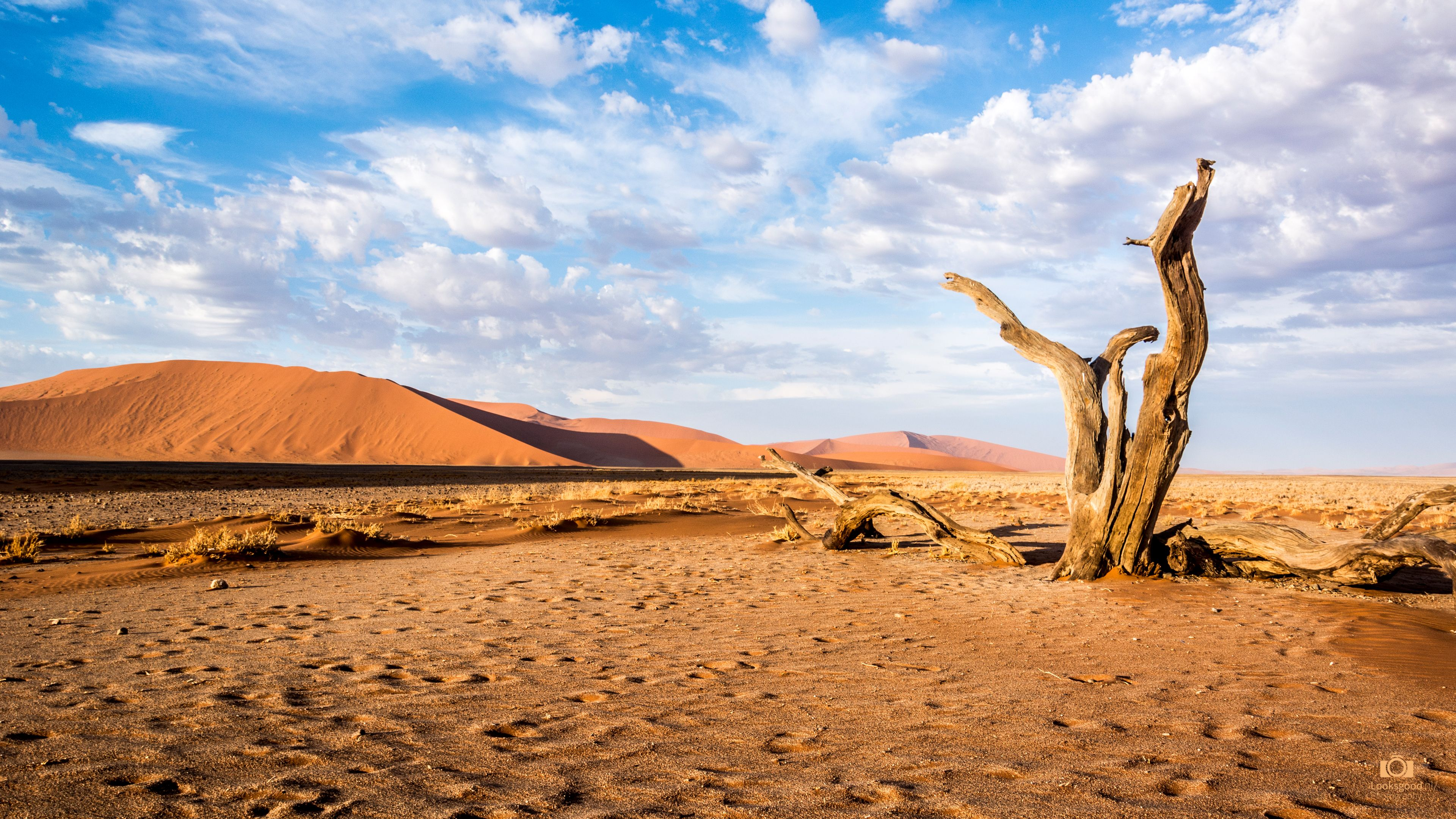 Sossusvlei Namibia Desert 4K Wallpaper / Desktop Background - Free ...
