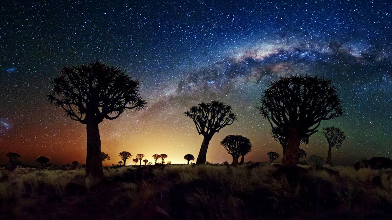 The Milky Way stretches over the Quiver Tree Forest, Namibia ...