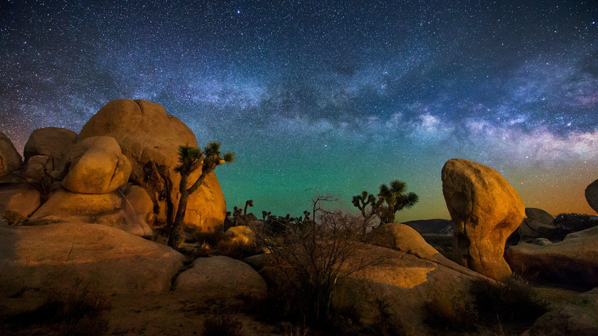 Starry Sky Joshua Tree National Park Usa Hd Wallpapers For Desktop